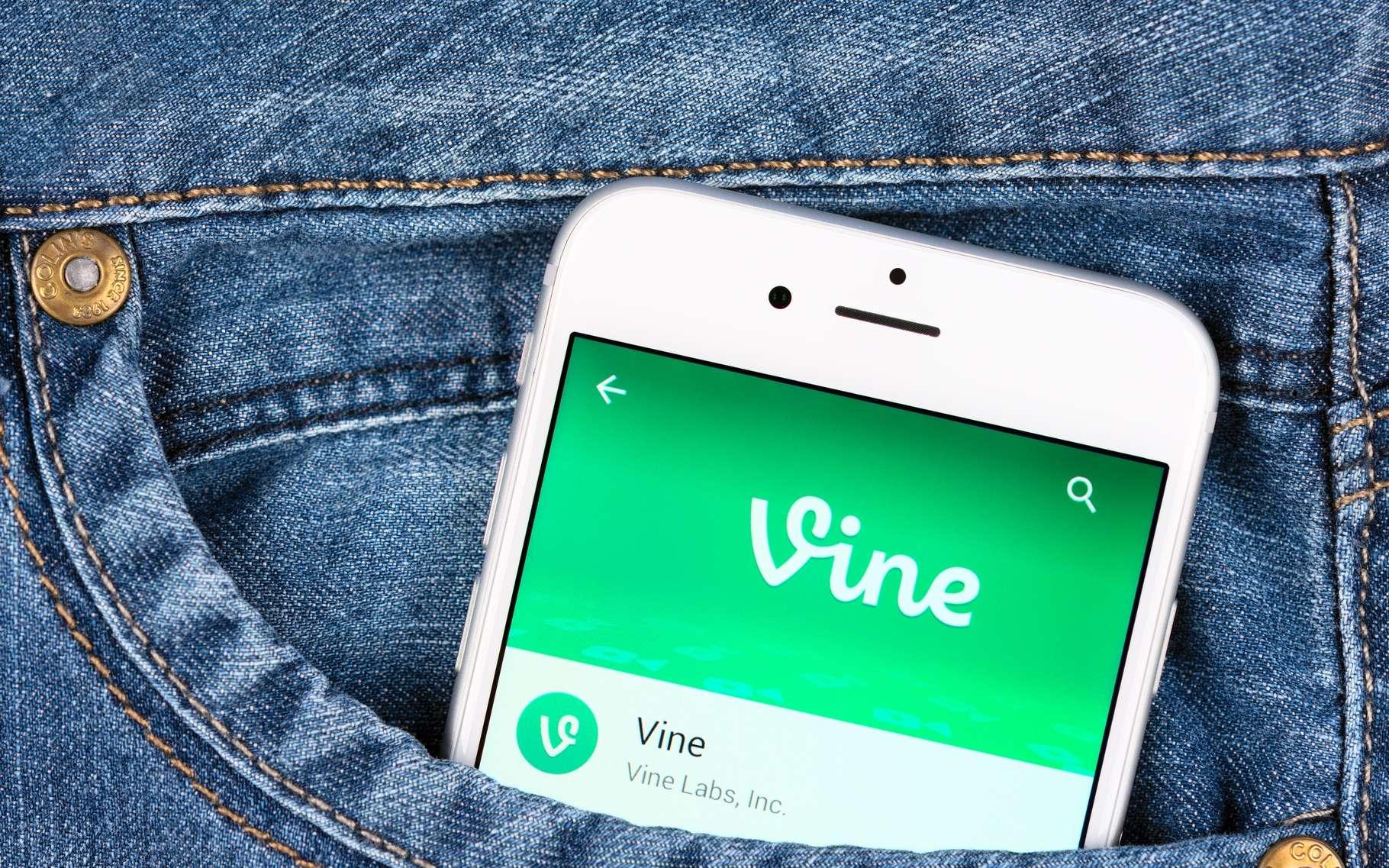 L'application Vine est disponible sur Android, iOS et Windows Phone. © Yeamake, Shutterstock