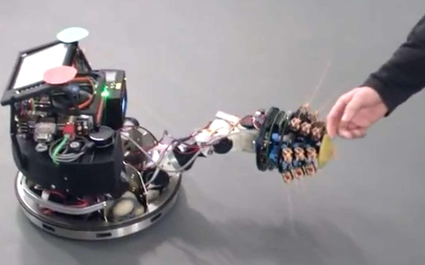 Le MechaLobster n'a qu'un seul vibrisse, qu'il darde vers l'avant, et progresse grâce à quatre pattes. Il est capable de réaliser une cartographie du lieu qu'il explore. © Martin Pearson, Bristol Robotics Lab
