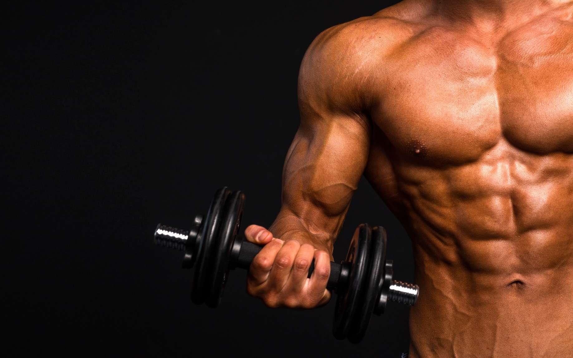 Les xéno-androgènes sont utilisés dans le monde du sport. © Stavros, Fotolia