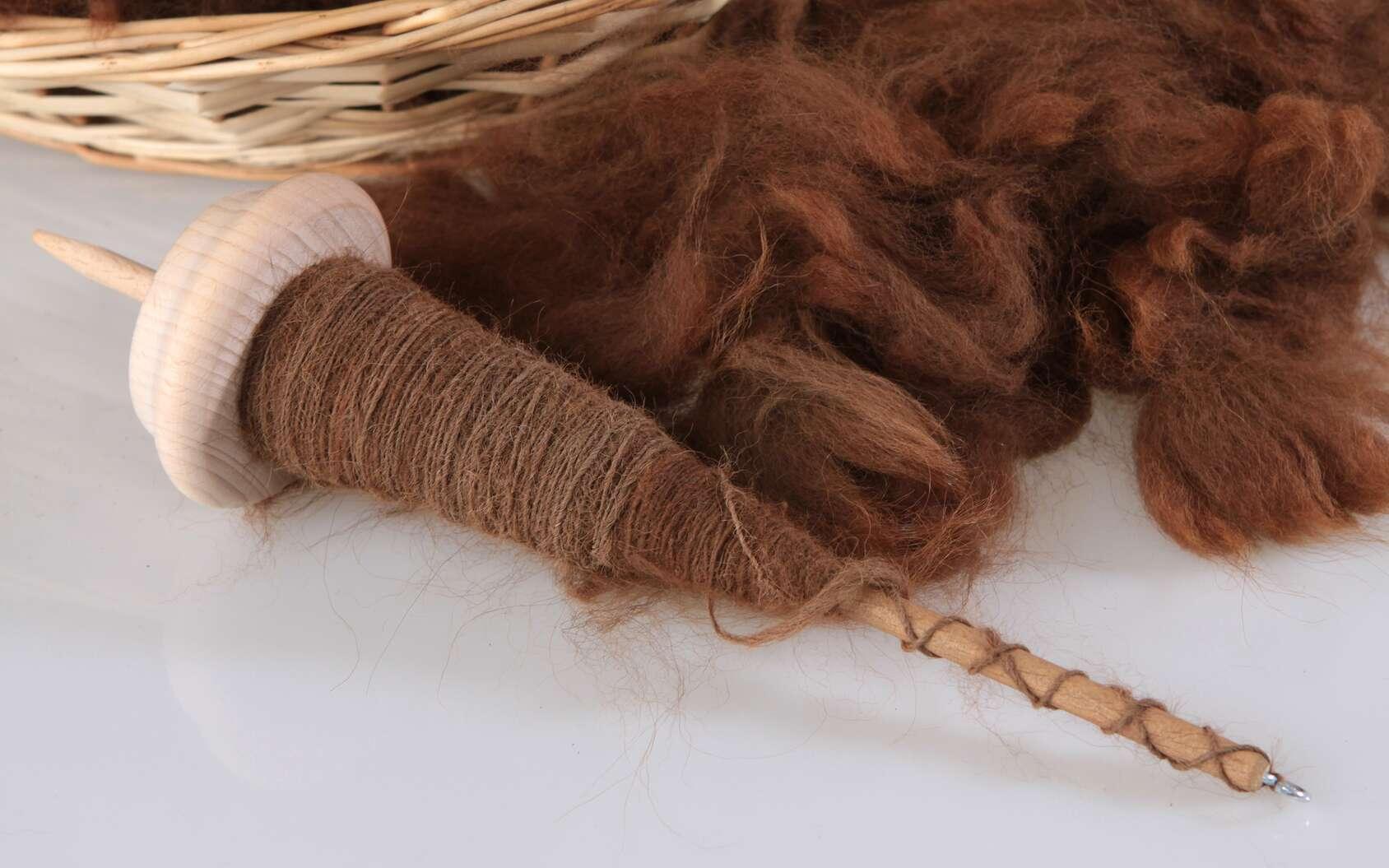 L'alpaga est réputé pour sa laine particulièrement fine et douce. © Karina Baumgart, Fotolia