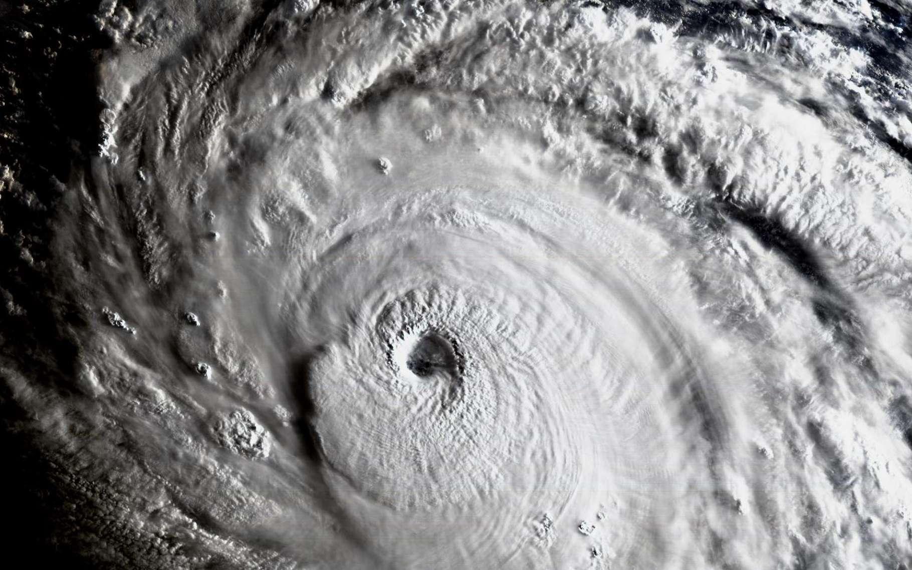 En 2017, l'ouragan Irma a atteint la catégorie 5 sur l'échelle Saffir-Simpson. Il a dévasté les Caraïbes avant de toucher la Floride. Ici, vu par le Geostationary Operational Environmental Satellite. © Université du Wisconsin