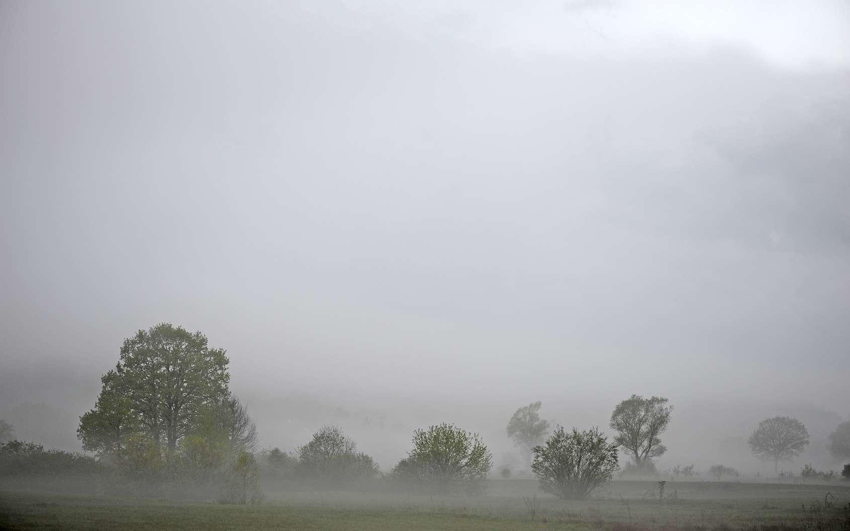 Le stratus est un nuage bas, gris-blanc, chargé de gouttelettes. © bennytrapp, Fotolia