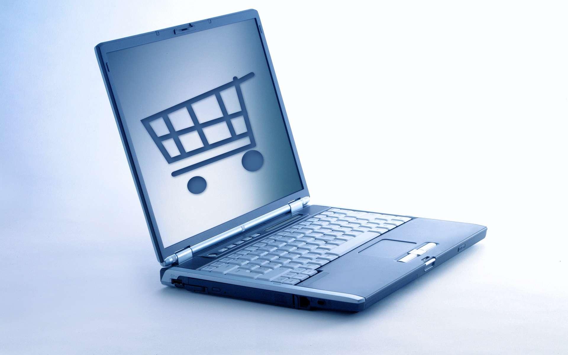 Faire ses courses en ligne, une tendance favorisée par les nouvelles technologies. © Simon Coste, Adobe Stock