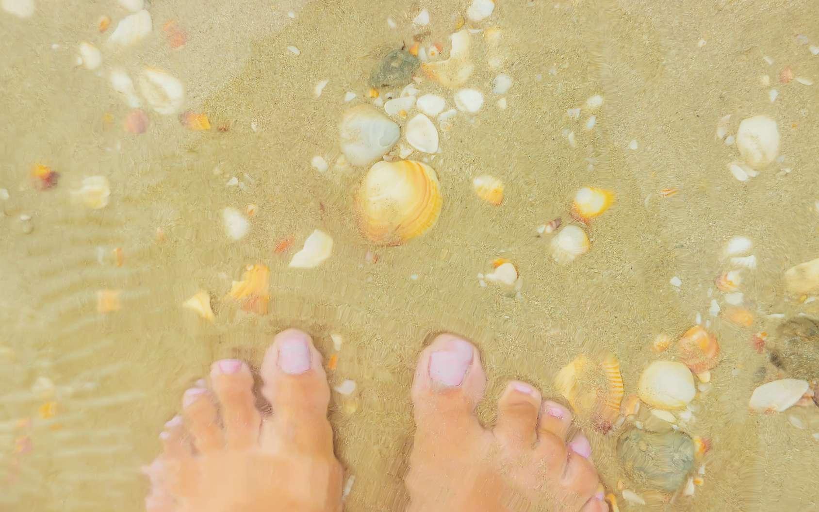 Après une exposition dans l'eau, personne n'y échappe : les doigts se fripent. Si esthétiquement ce n'est pas ce qui se fait de mieux, certains scientifiques pensent qu'un tel mécanisme pourrait avoir eu un intérêt pour notre survie. En a-t-il toujours un aujourd'hui ? © yanadjan, fotolia
