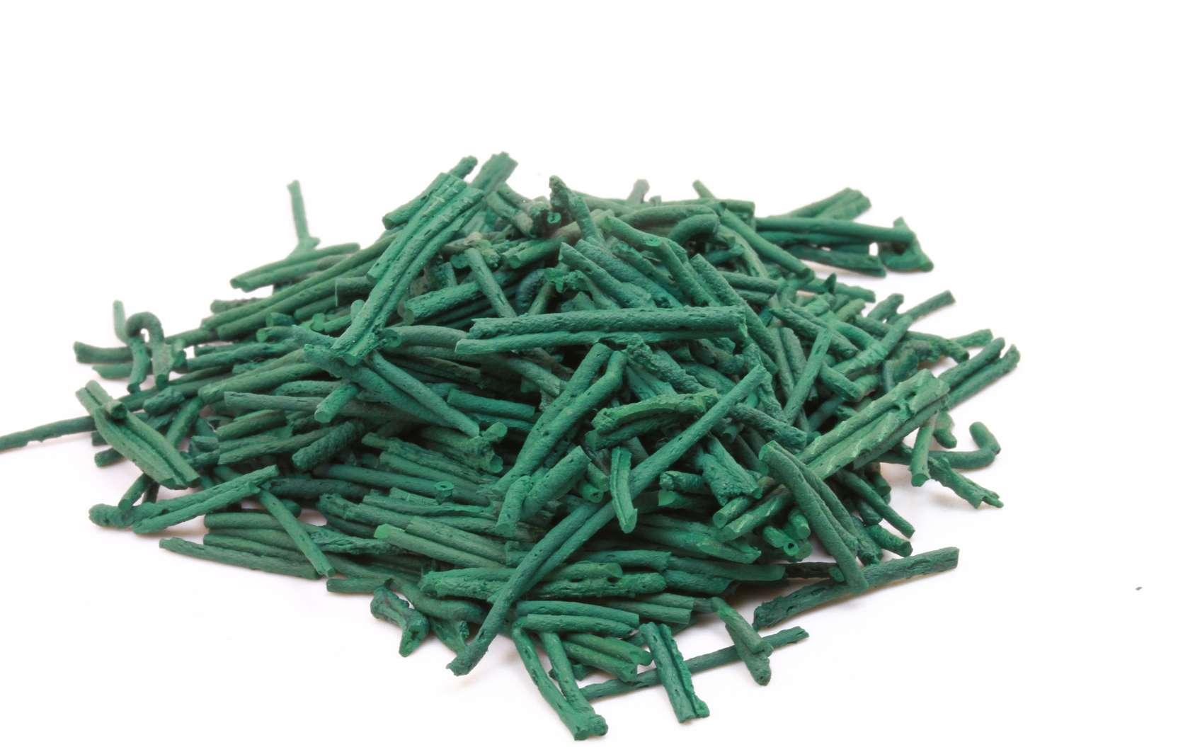 Les vertus de la spiruline sont dues à sa forte teneur en provitamines et en minéraux. © chanelle, Fotolia
