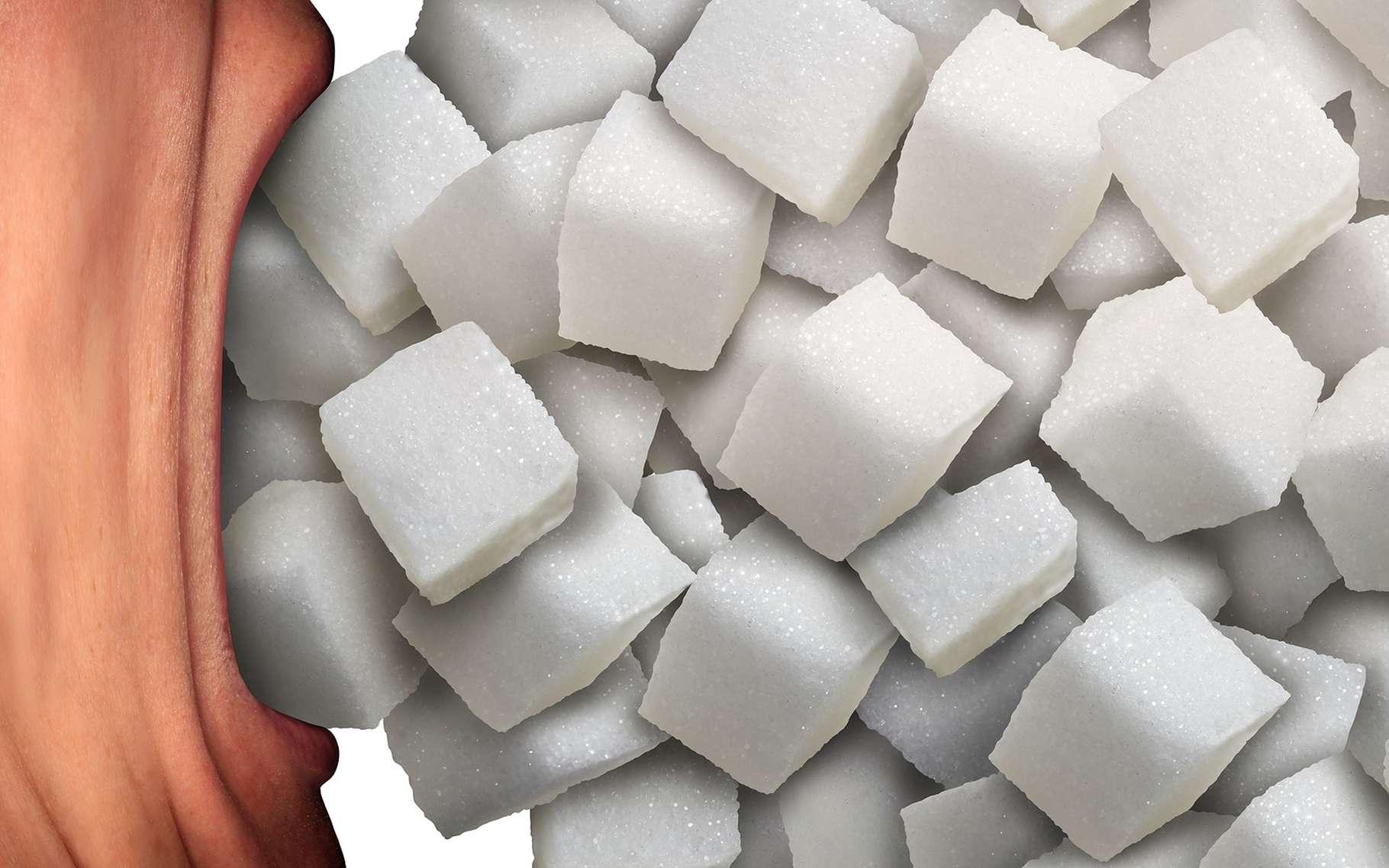Risque cardiaque : le sucre est-il vraiment innocent ? © Lightspring, Shutterstock
