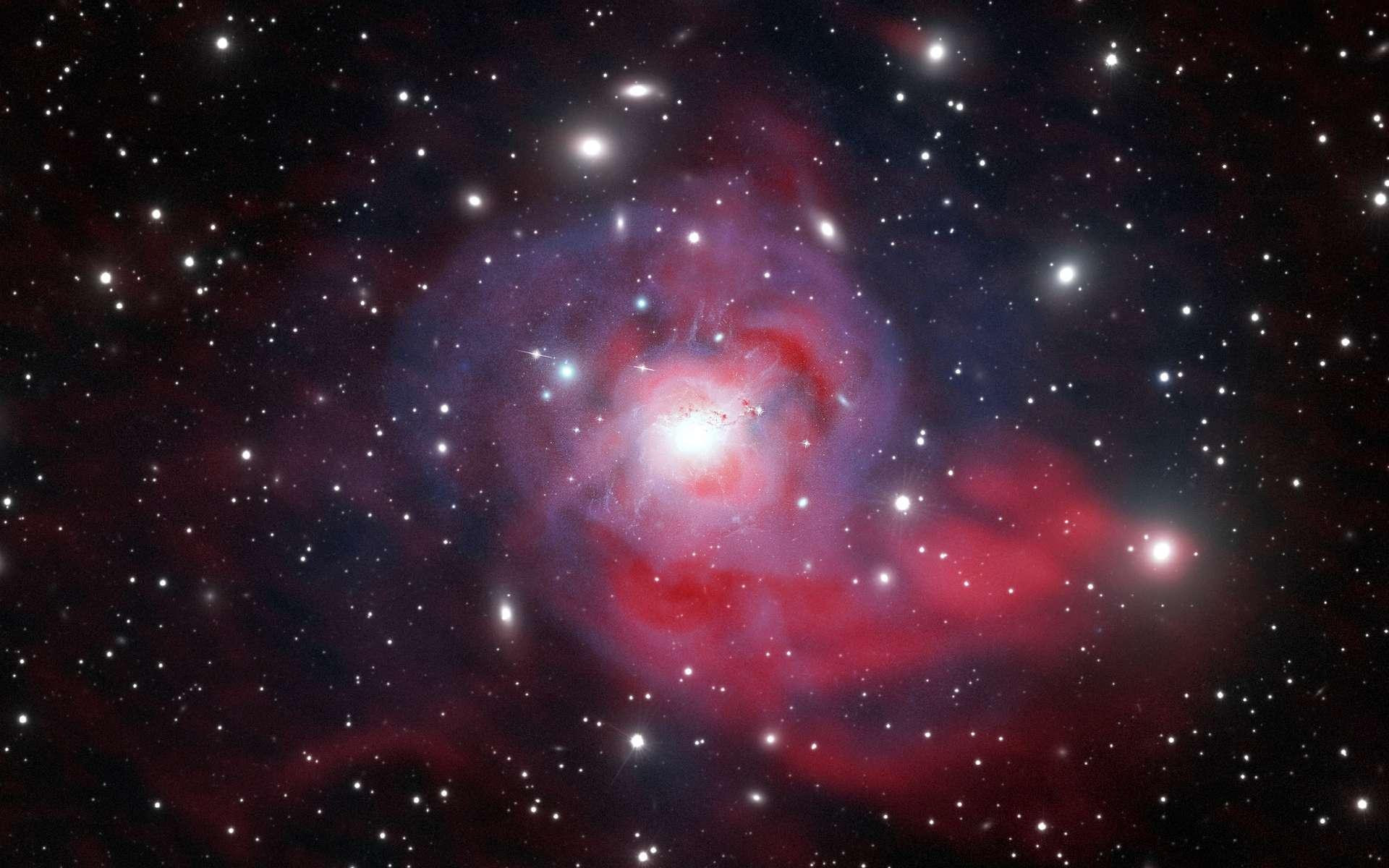 Cette image de NGC 1275 est une composition réunissant des données captées en lumière visible « Hubble », en rayon X « Chandra » et en onde radio « VLA (NRAO) ». © Marie-Lou Gendron-Marsolais (université de Montréal), Julie Hlavacek-Larrondo (université de Montréal), Maxime Pivin Lapointe, CC by-sa 4.0