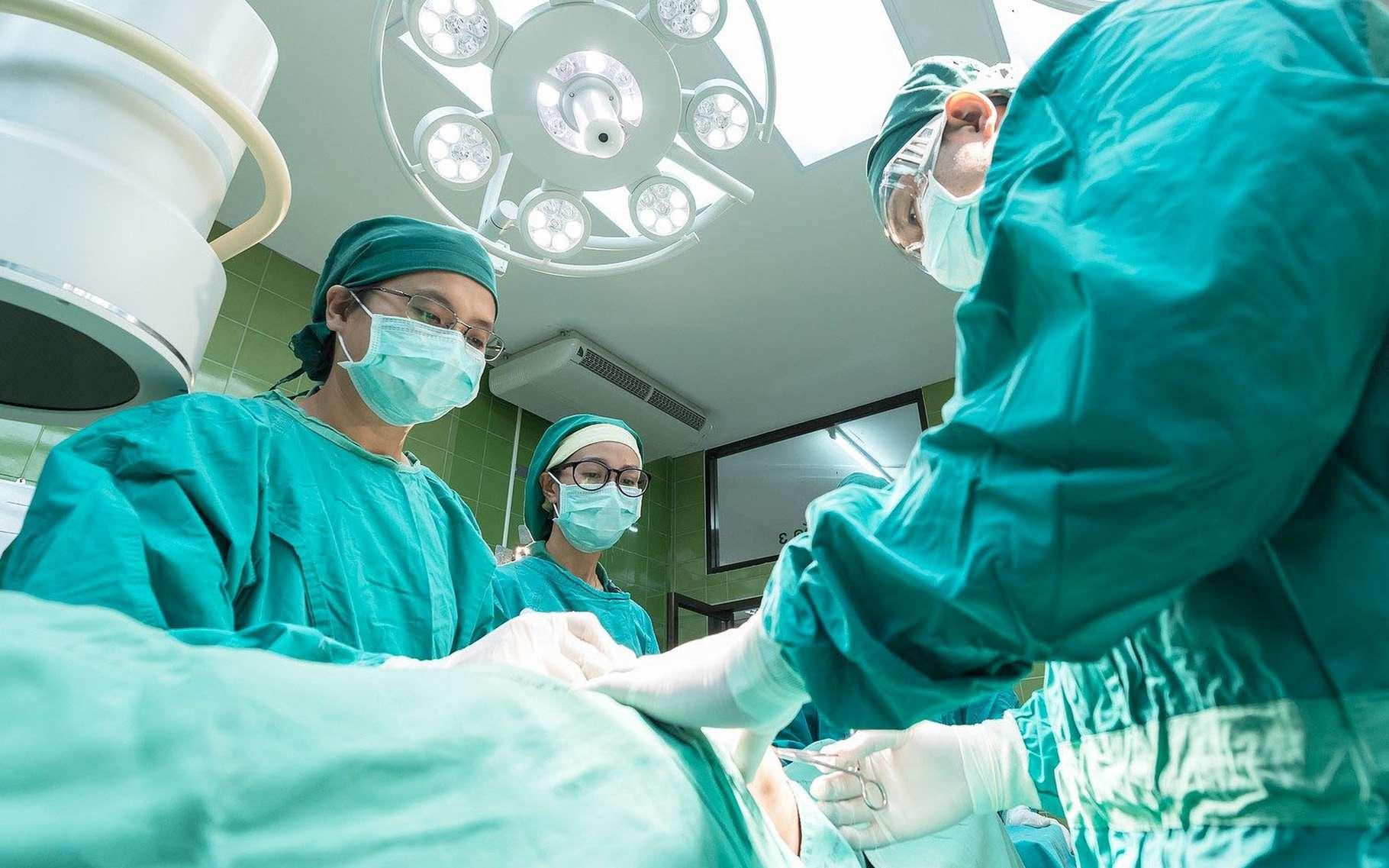 Les labiaplasties font aujourd'hui l'objet d'opération fréquentes. © Sasint, Pixabay, DP