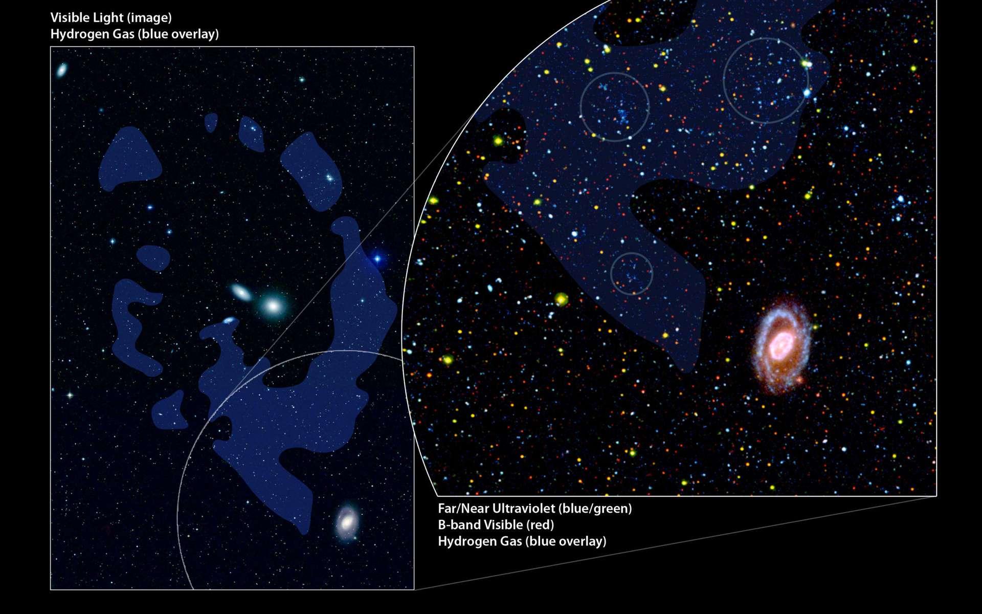 Découvert il y a 25 ans dans le domaine radio, l'Anneau du Lion possède bel et bien des concentrations d'étoiles comme le montre ce zoom avec trois régions cerclées. Colorées en bleu-vert, des étoiles massives y émettent en ultraviolet comme le révèlent les instruments de Galex. Crédit : Nasa/JPL-Caltech/DSS