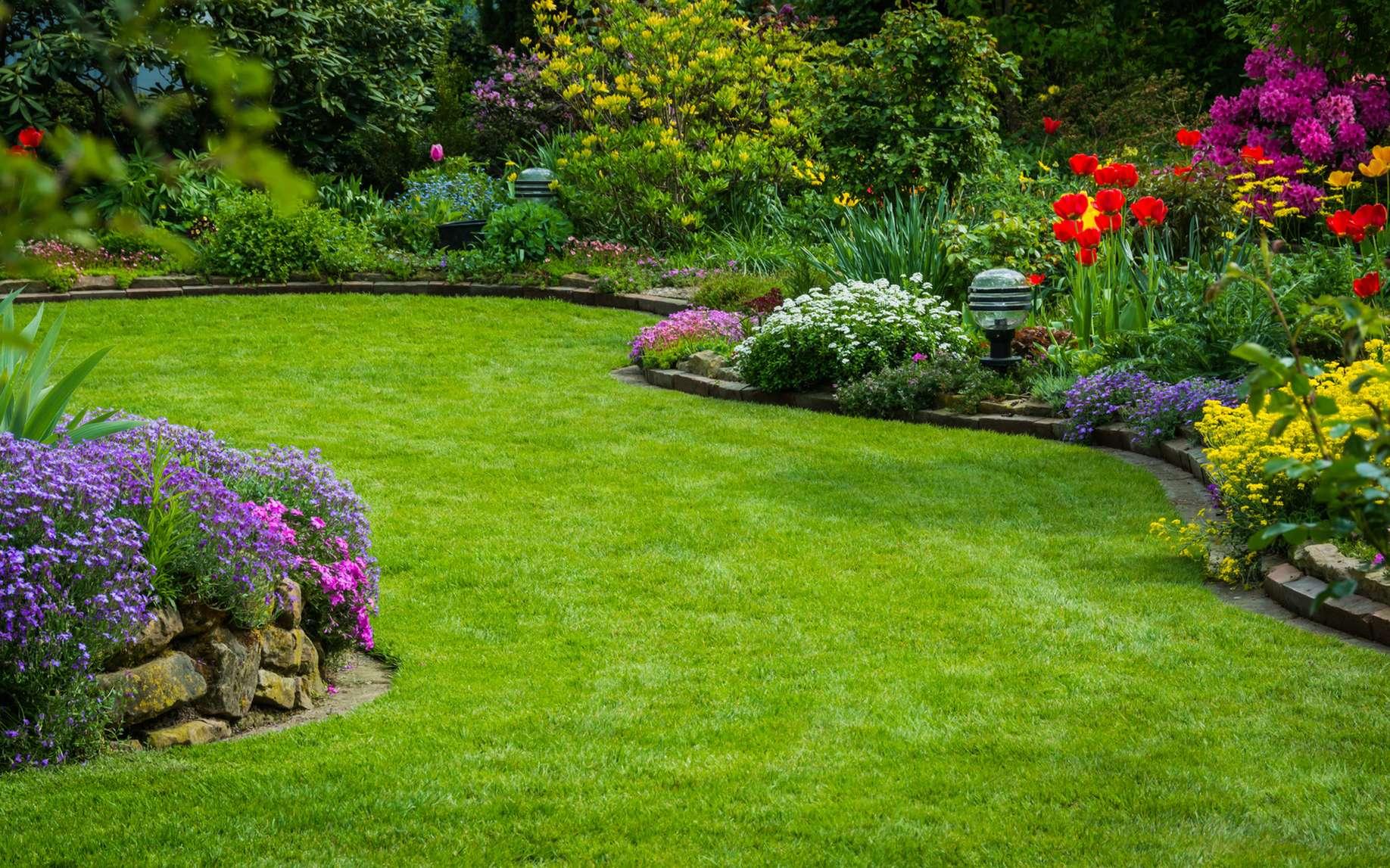 Comment éviter à votre pelouse de jaunir ? © Andrea, fotolia