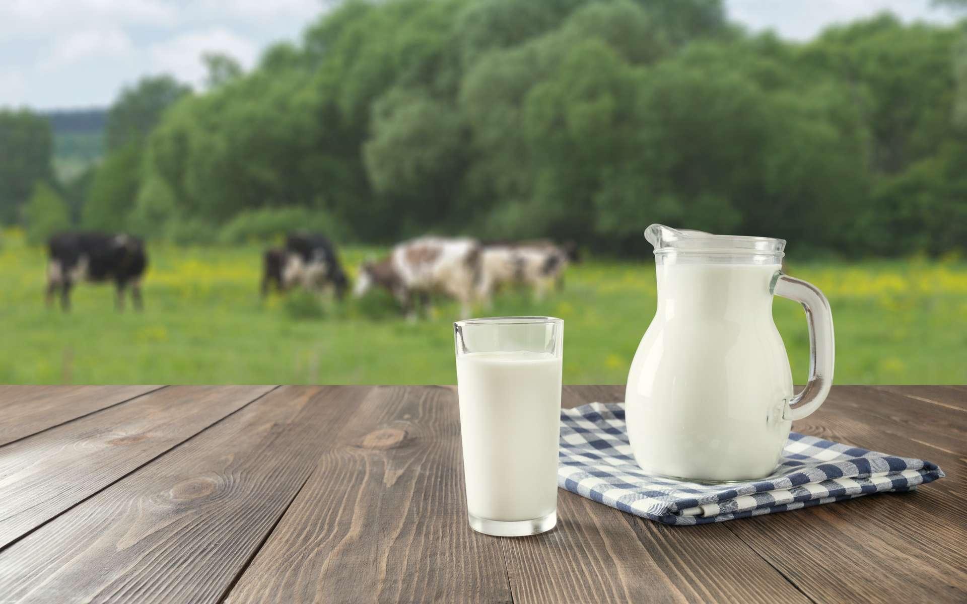 La consommation de lait de vache n'est pas associée à une incidence plus élevée de cancer du sein. © svetlana_cherruty, Adobe Stock