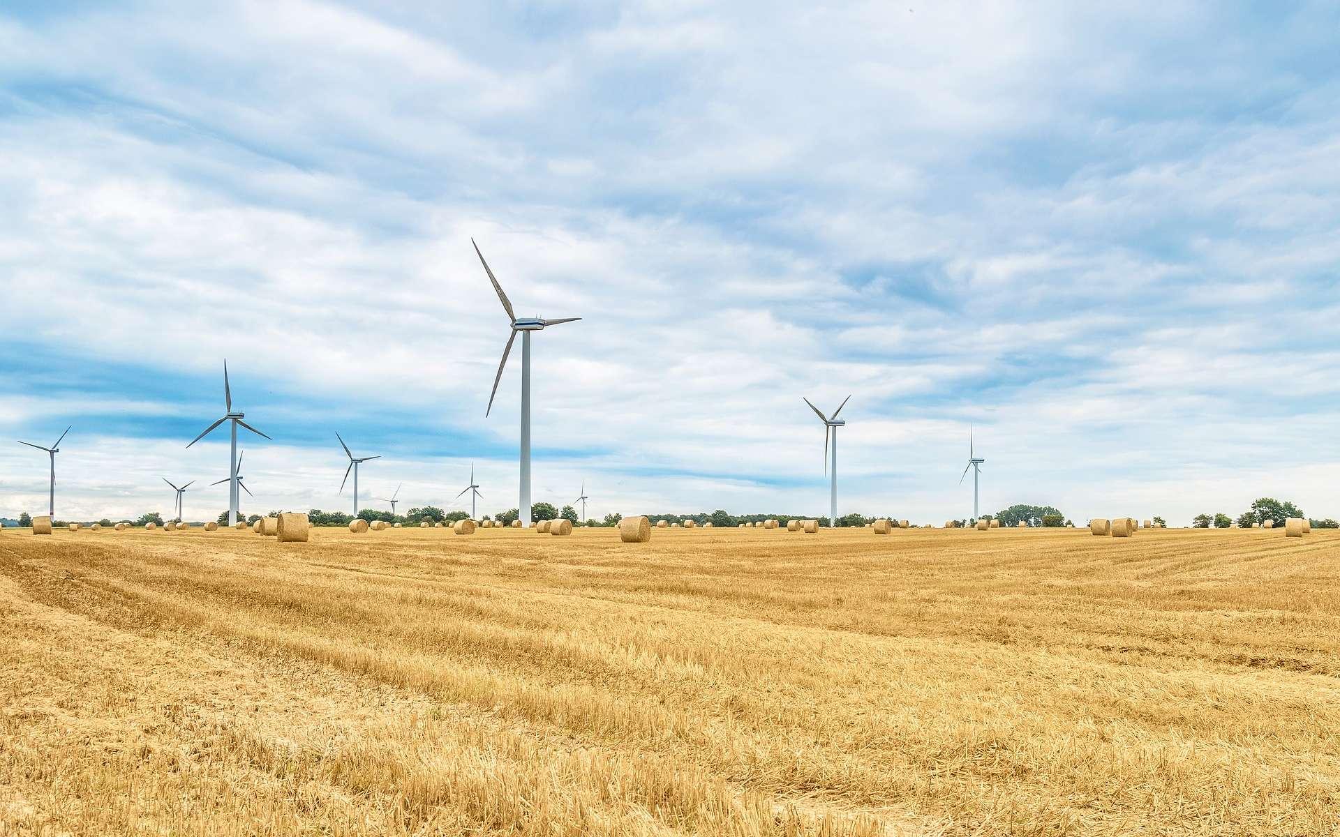 Il existe cinq types d'énergies renouvelables : solaire, éolienne, hydraulique, biomasse et géothermie. Ici, des éoliennes. © kliemphoto, Pixabay