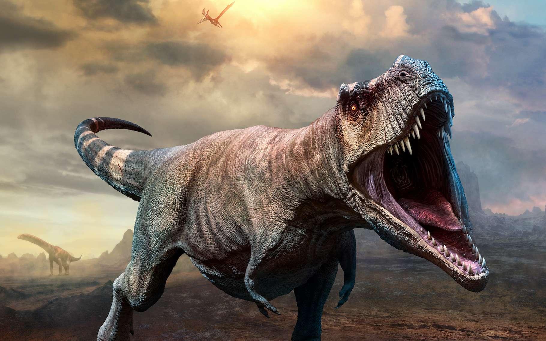 Des chercheurs l'université de l'État de l'Oklahoma (États-Unis) mettent fin au mythe du Nanotyrannus. Les fossiles retrouvés n'étaient autres que ceux de jeunes Tyrannosaurus rex. © warpaintcobra, Adobe Stock
