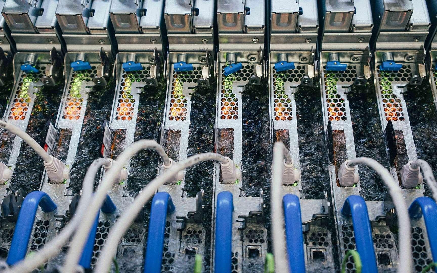 Le liquide utilisé pour le système de refroidissement par immersion biphasé bout à 50 °C. © Gene Twedt pour Microsoft