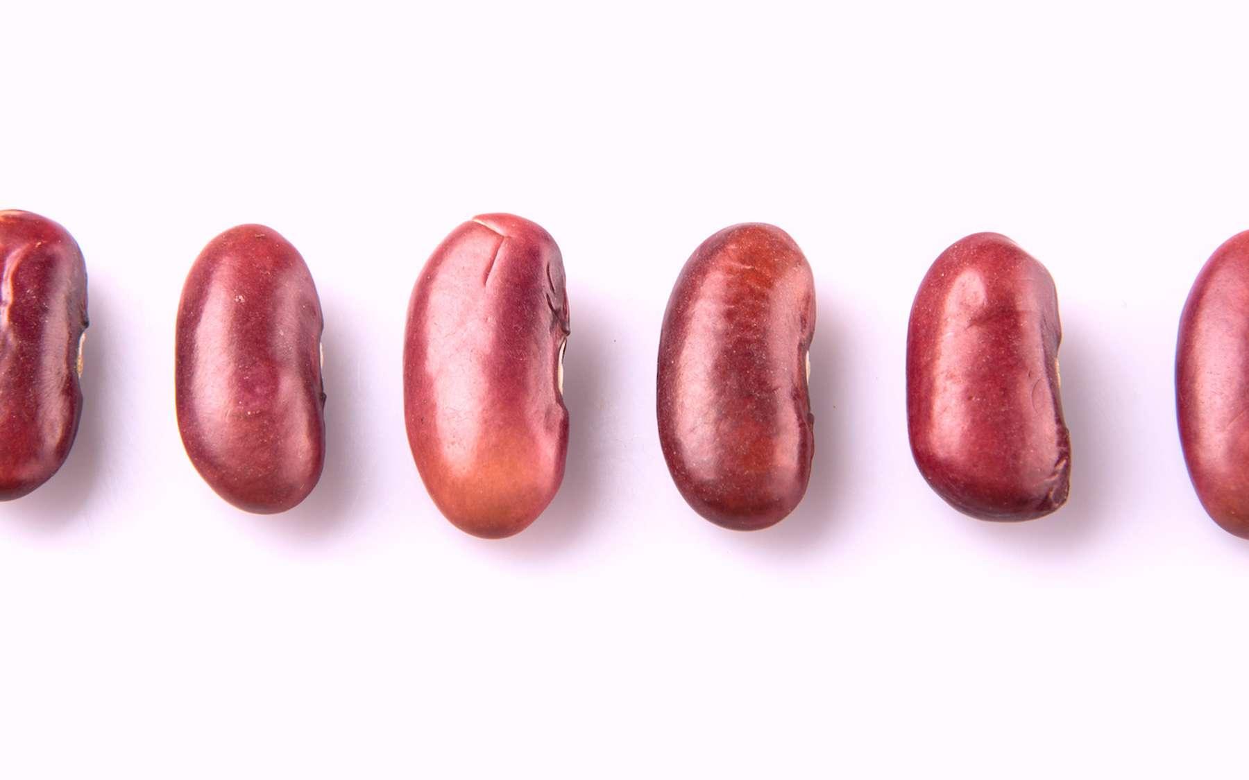 Les haricots secs ne peuvent pas faire office de sex-toy ! © akulamatiau, Adobe Stock