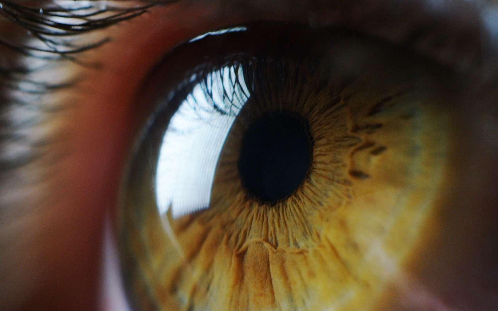 Un patient aveugle soigné par la thérapie optogénétique. © HQUALITY, Adobe Stock