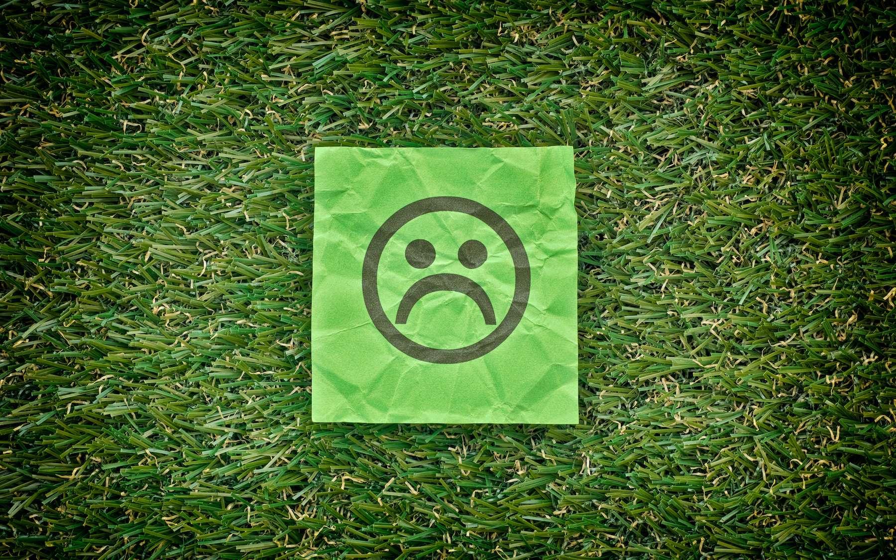 L'effet rebond menace nos objectifs climatiques. © Stepan Popov, Adobe Stock