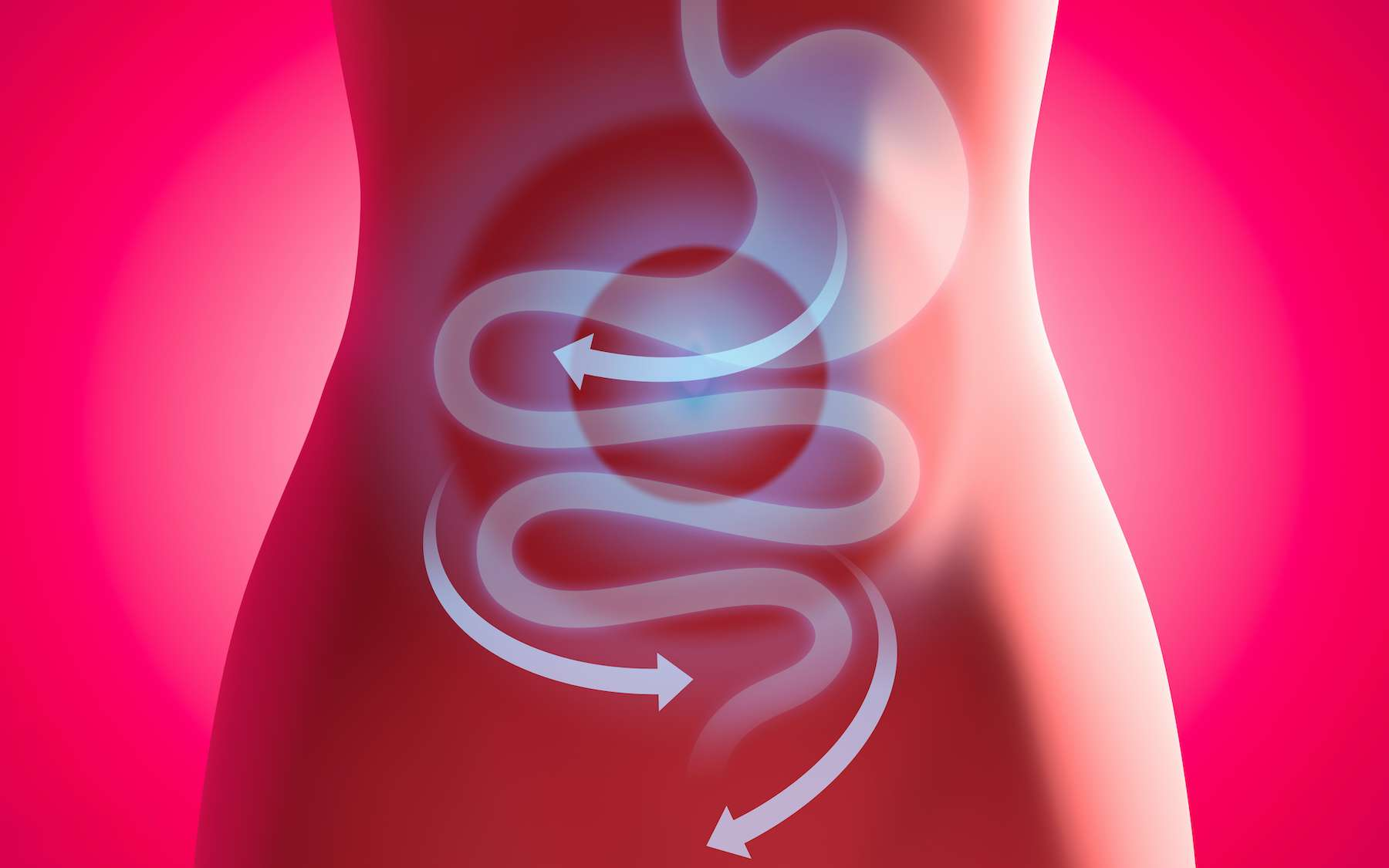 À quelle vitesse se vide l'estomac ? © ag visuell, Adobe Stock