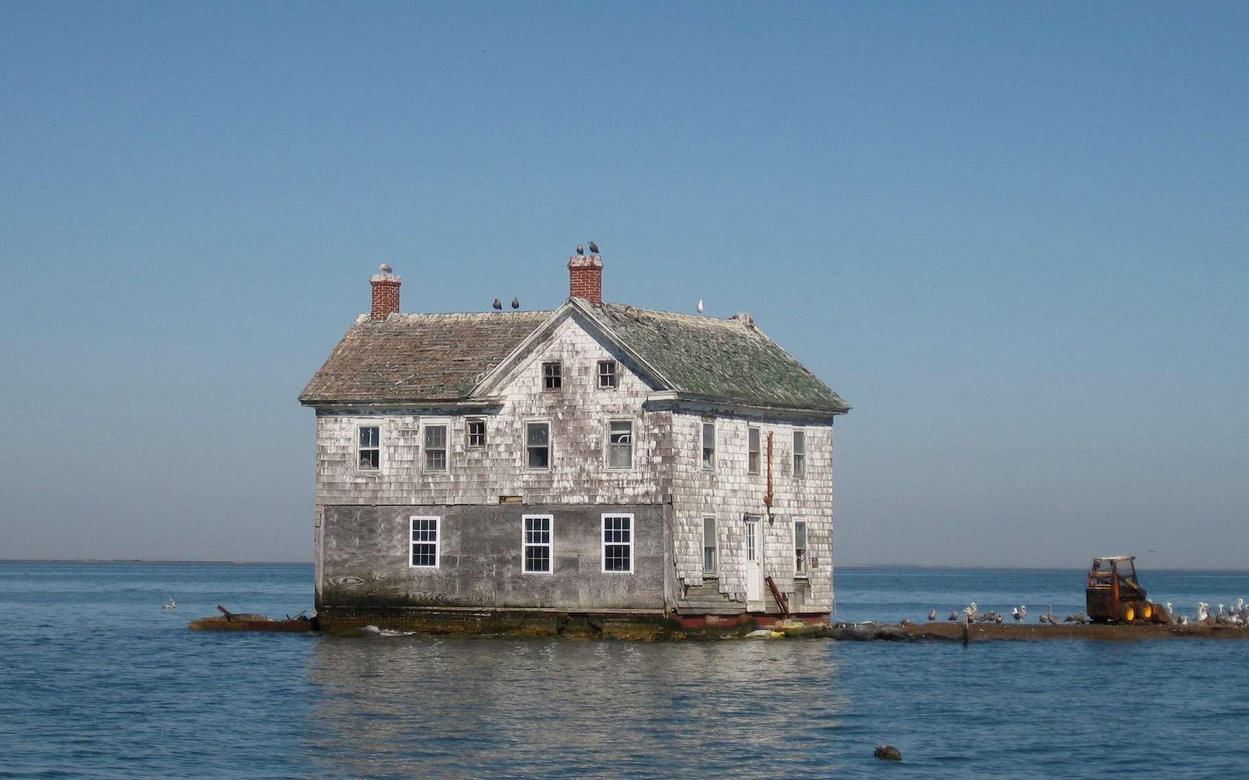 C'est la toute dernière maison qui restait sur Holland Island (Maryland, États-Unis). Une île submergée par l'élévation du niveau de la mer et par l'affaissement de la surface des terres. La maison s'est finalement effondrée en 2010. © baldeaglebluff, Wikipedia, CC by-SA 2.0