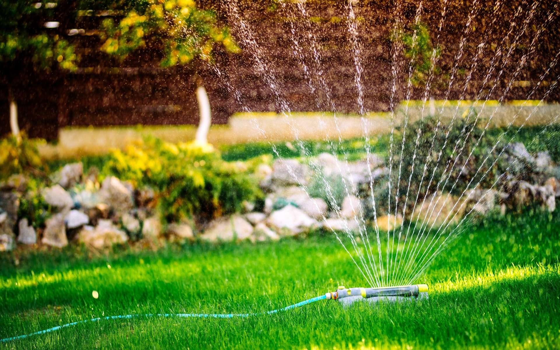 Primordial pour un jardin verdoyant, l'arrosage. Pour arroser ni trop, ni pas assez, les solutions domotiques assurent la gestion de l'eau. Des économies sur la facture et du temps en plus pour profiter du jardin. © bogdanhoda, Adobe Stock