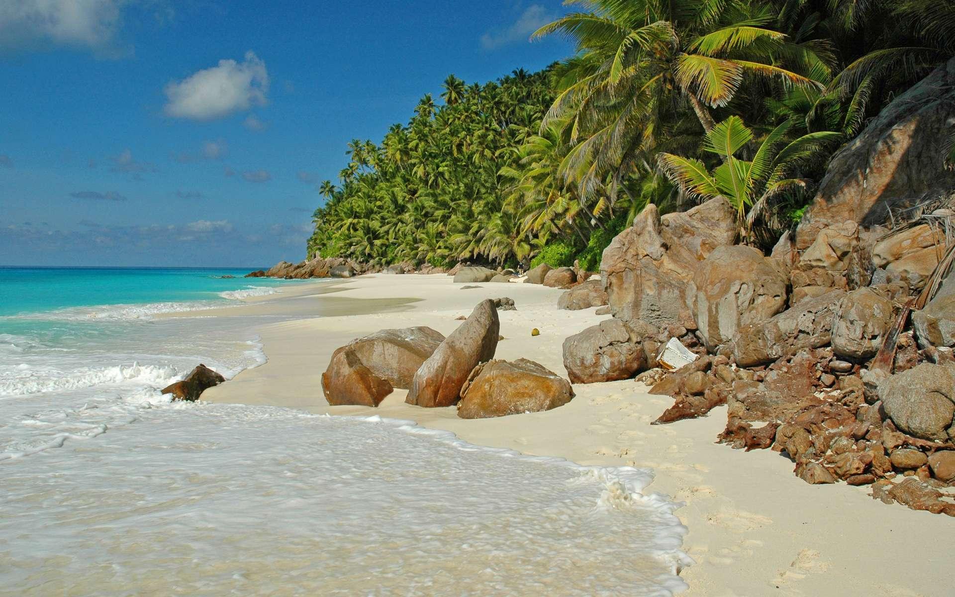 La plage de l'anse Victorin, dans l'île de Frégate aux Seychelles, est une source d'émerveillement. Sa contemplation réduirait les réactions inflammatoires. © Antoine