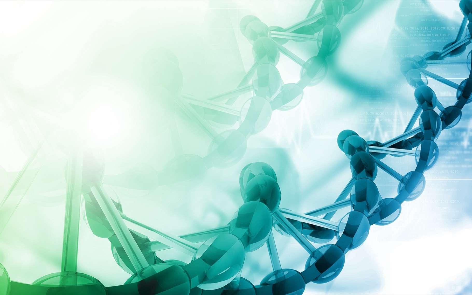 Les purines servent de base à des nucléotides de l'ADN. © hywards, Shutterstock