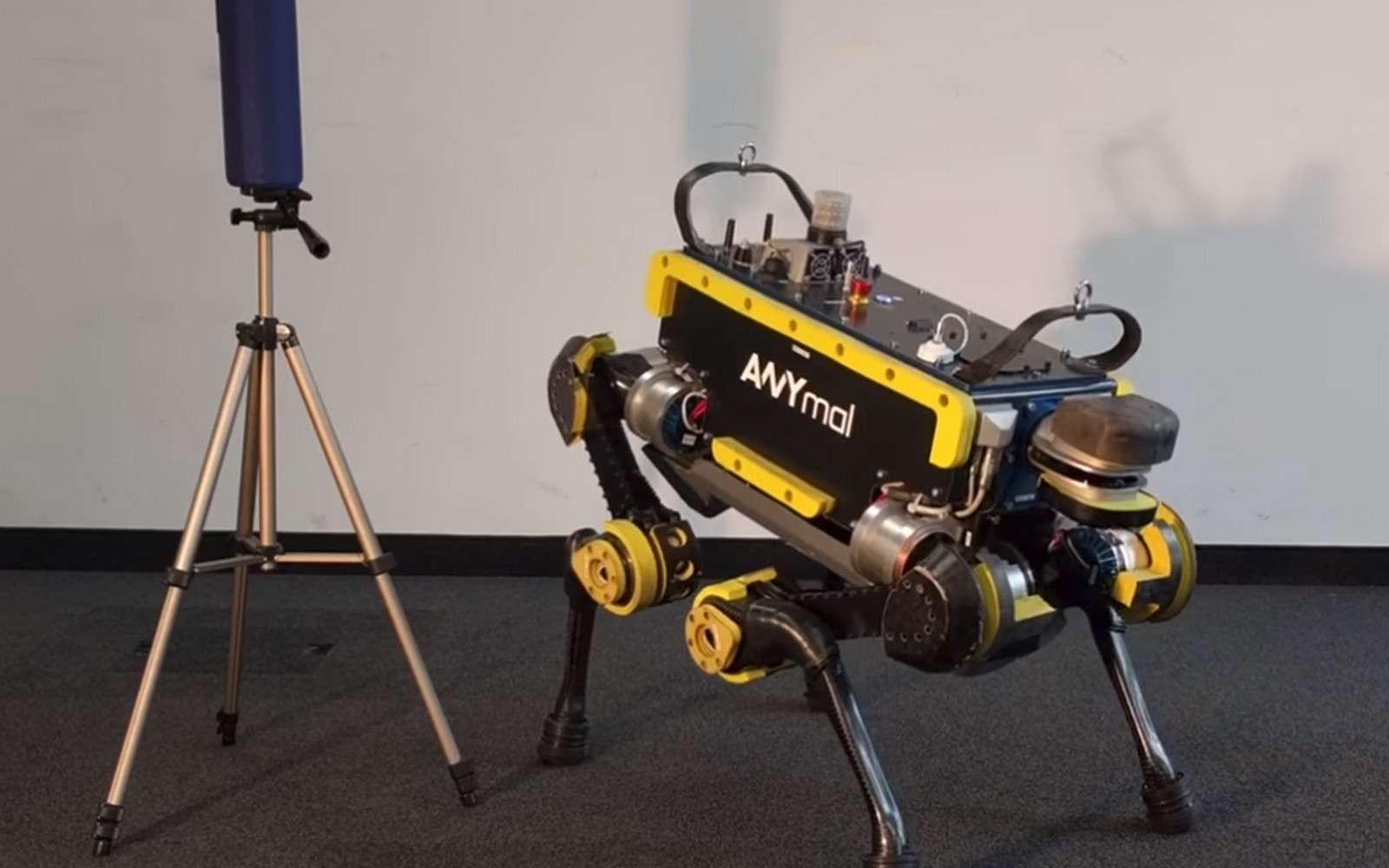 Le robot ANYmal est un sacré danseur. © ETH Zurich