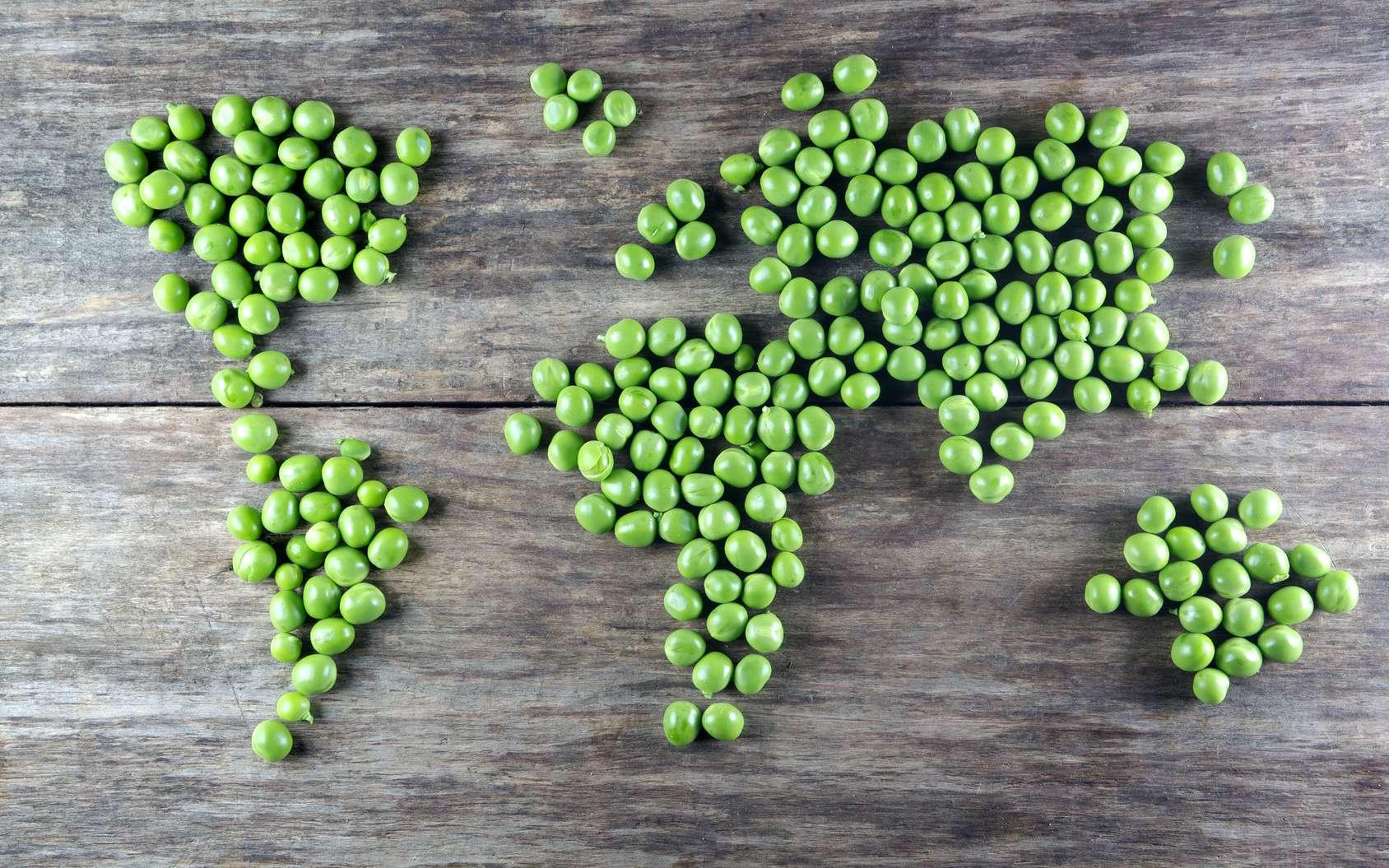 L'alimentation est le défi mondial du XXIe siècle. © Vetre, Fotolia