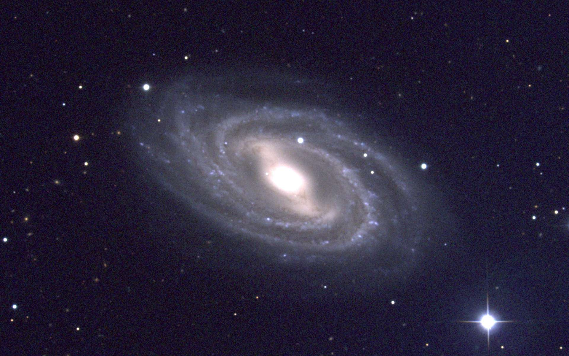 Une galaxie spirale barrée, M 109. Crédit : National Optical Astronomy Observatory/Association of Universities for Research in Astronomy/National Science Foundation