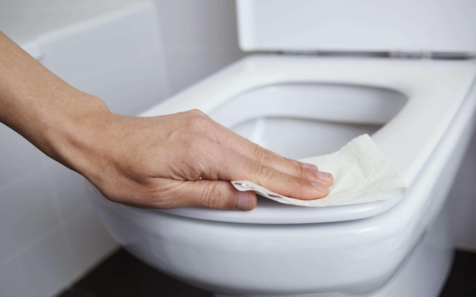 Nettoyer la cuvette des toilettes, notamment celles publiques, permet de limiter une potentielle contamination par le SARS-CoV-2. © nito, Adobe Stock