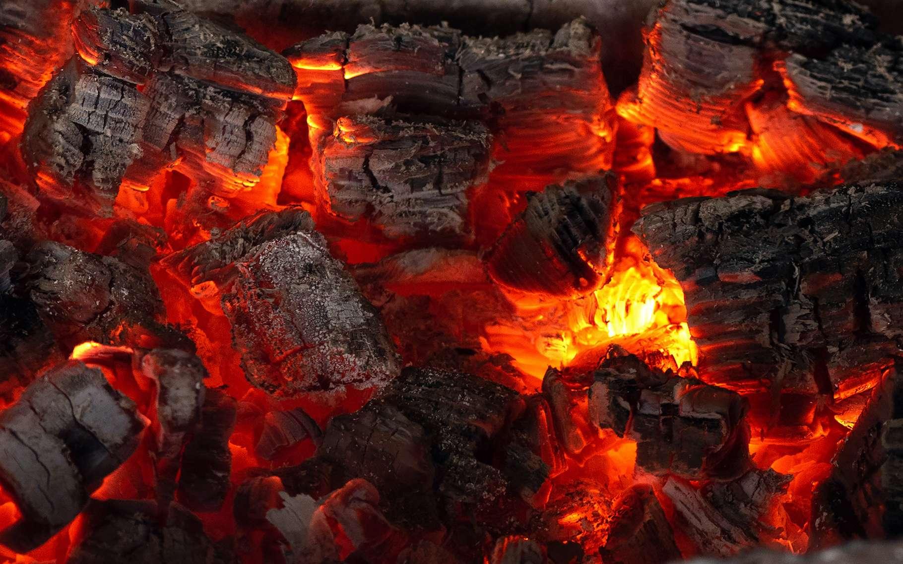 Des chercheurs de l'université de l'État de l'Arizona (États-Unis) présentent des preuves de la combustion d'une quantité colossale de charbon à l'époque où a eu lieu la pire des extinctions de masse sur notre Terre. © Dmitriy, Adobe Stock