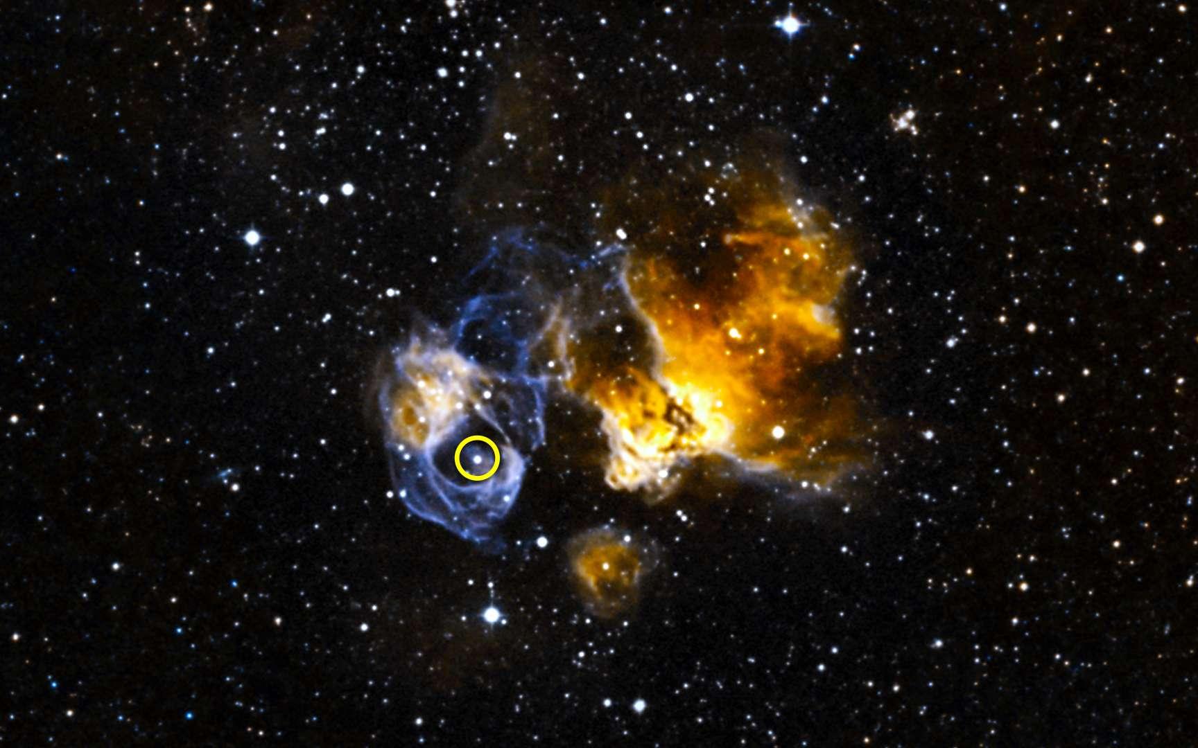 DEM L241 est un reste de supernova situé dans le Grand Nuage de Magellan. Le cercle sur cette image entoure l'étoile binaire LMC P3 qui s'est révélée être une puissante source de rayons gamma. © Nasa, Goddard Space Flight Center