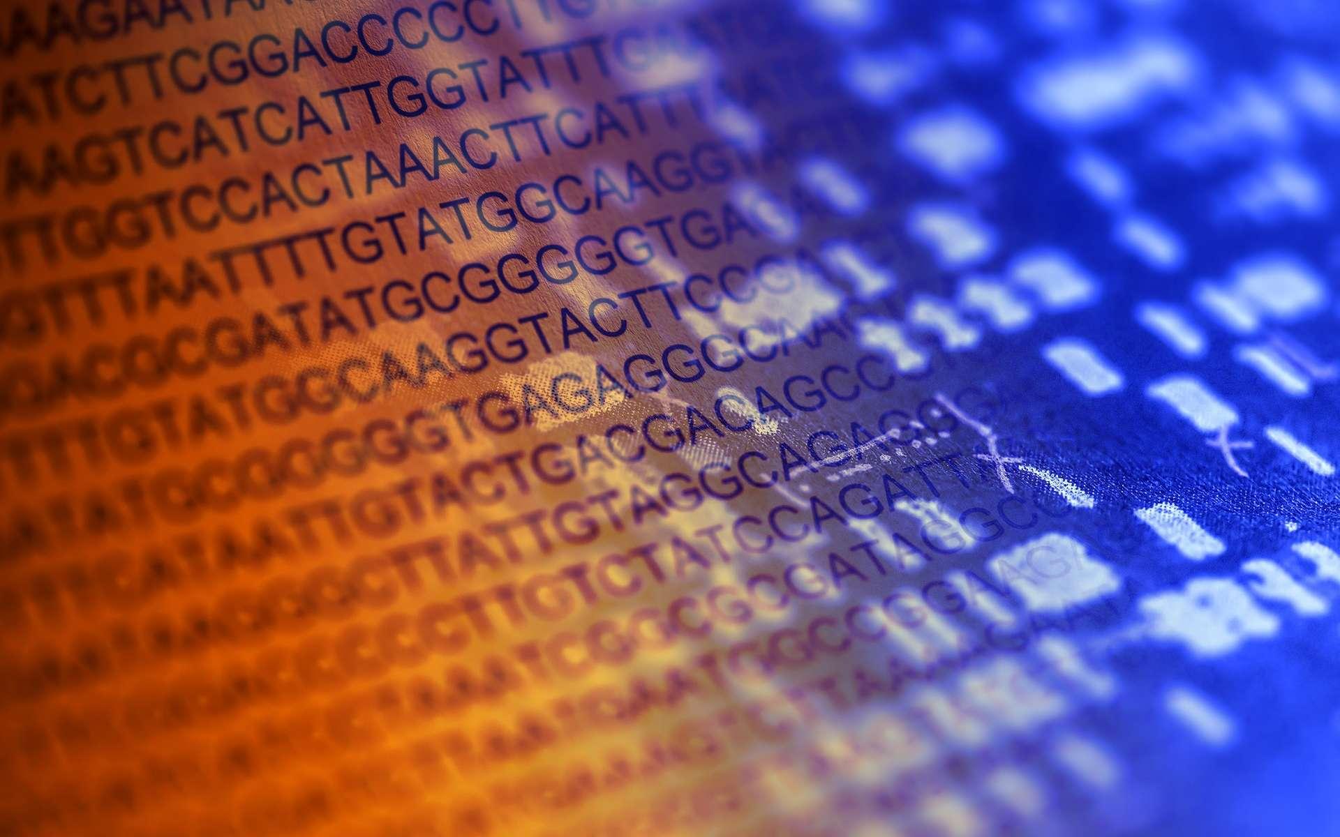 Bonaparte identifie les victimes en comparant les ADN avec ceux de membres des familles des disparus. © isak55, Shutterstock