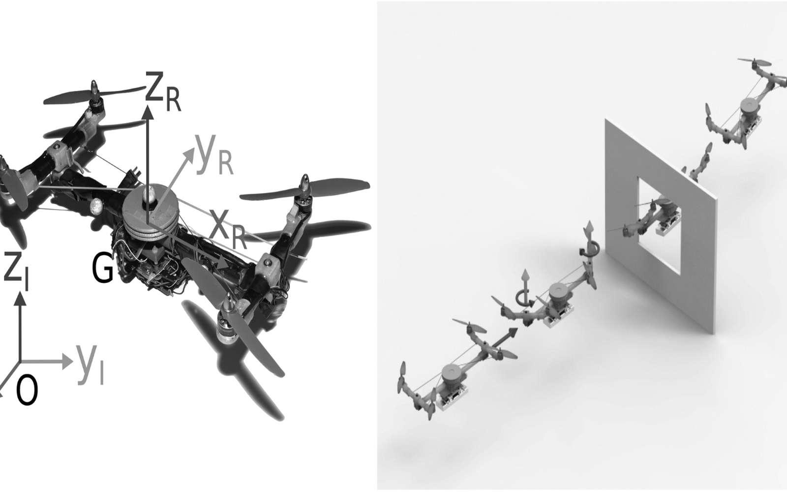 Le Quad-Morphing du CNRS peut réorienter ses bras pour se faufiler dans les interstices comme pourraient le faire les oiseaux en rabattant leurs ailes. De cette façon, ce drone peut réduire son envergure de 48 %. © Valentin Rivière et Stéphane Viollet, Institut des sciences du mouvement – Étienne Jules Marey (CNRS/Aix-Marseille Université)