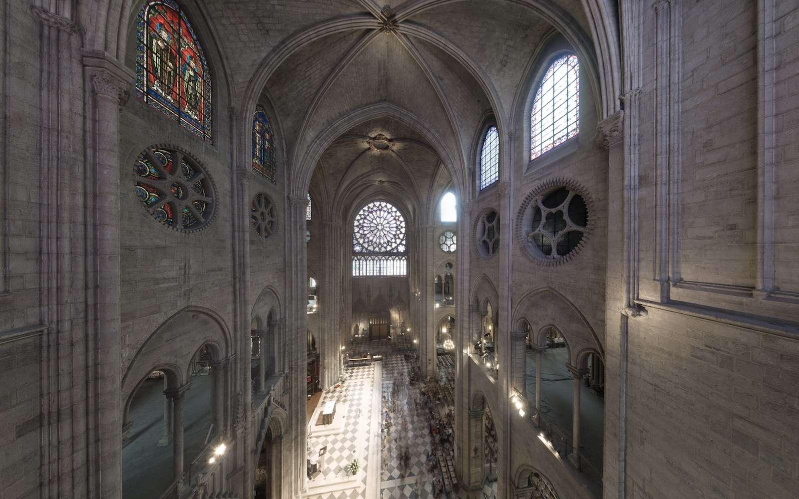Le nuage de points révèle la structure et les secrets de fabrication de la cathédrale. © Andrew Tallon