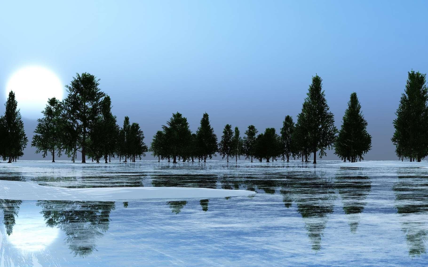 Des chercheurs de l'Institut Alfred Wegener pour la recherche polaire et marine (Allemagne) ont trouvé des traces d'une ancienne forêt en Antarctique. © ustas, Adobe Stock