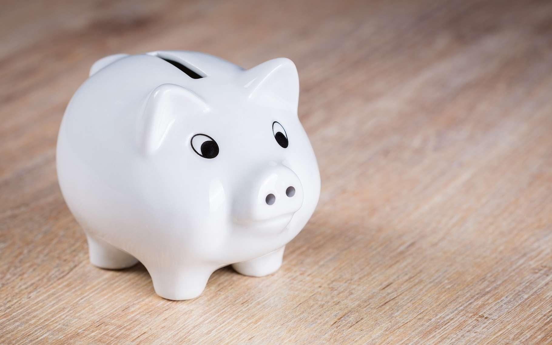 Il existe de nombreuses astuces qui permettent d'économiser de l'argent. Et parfois même d'en gagner un peu. © andibreit, Pixabay, CC0 Creative Commons