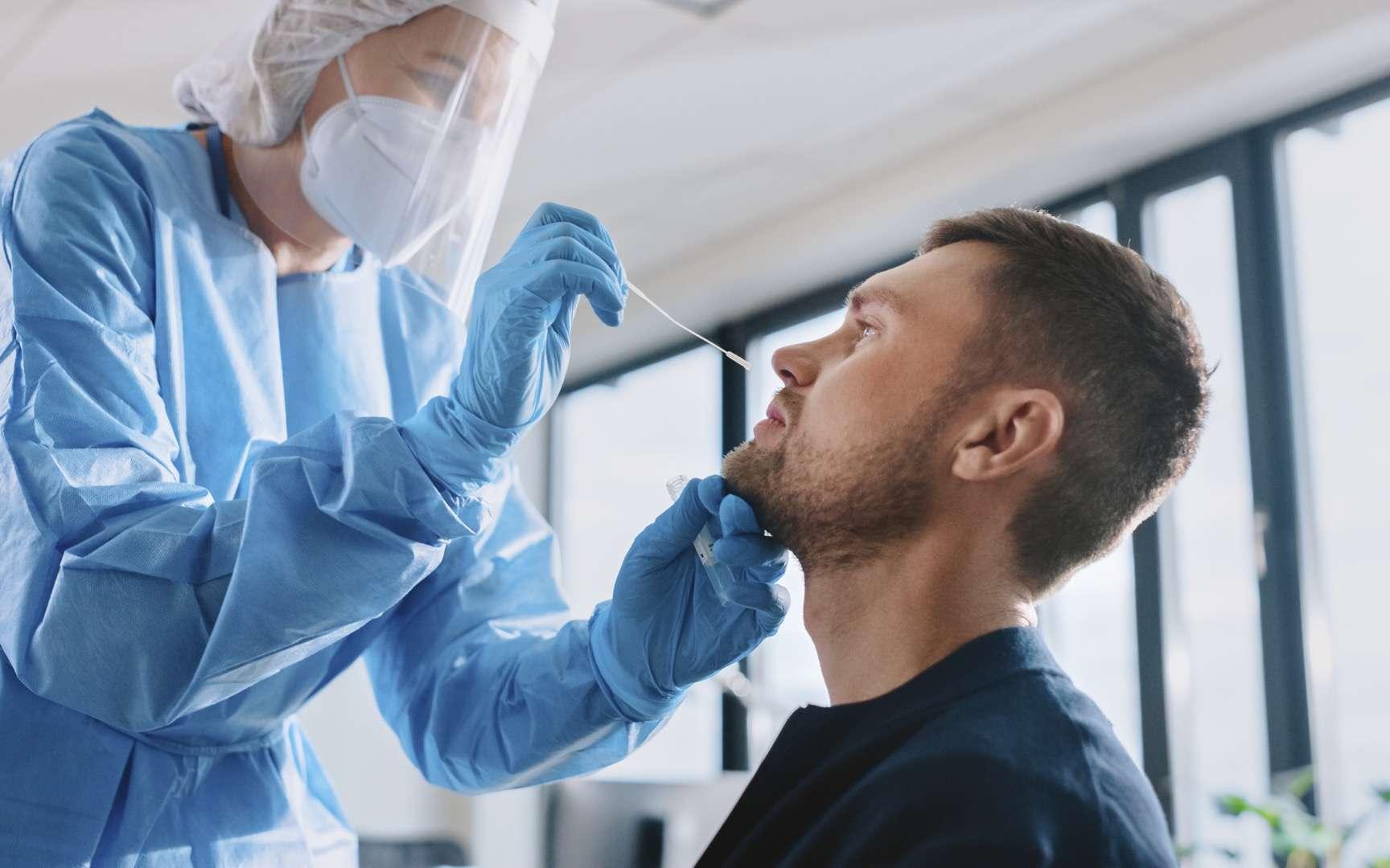 Grâce à une technique innovante, le test PCR et son écouvillon utilisé pour le dépistage du SARS-CoV-2, peuvent également détecter les patients à risque de développer une forme grave de la Covid-19. © Gorodenkoff, Adobe Stock