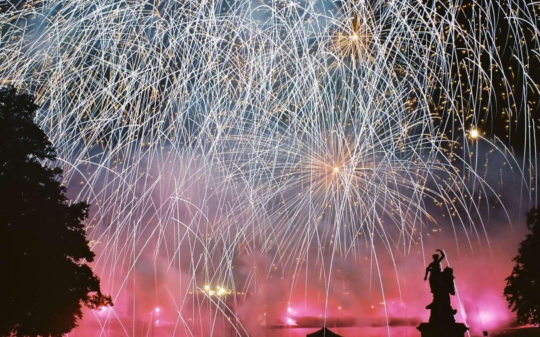 Océan de lumières. Le ciel plongé dans les couleurs bleues et roses par une multitude de feux d'artifices. © Vincent Blot Tous droits réservés Source : http://www.nuitsdefeu.com/