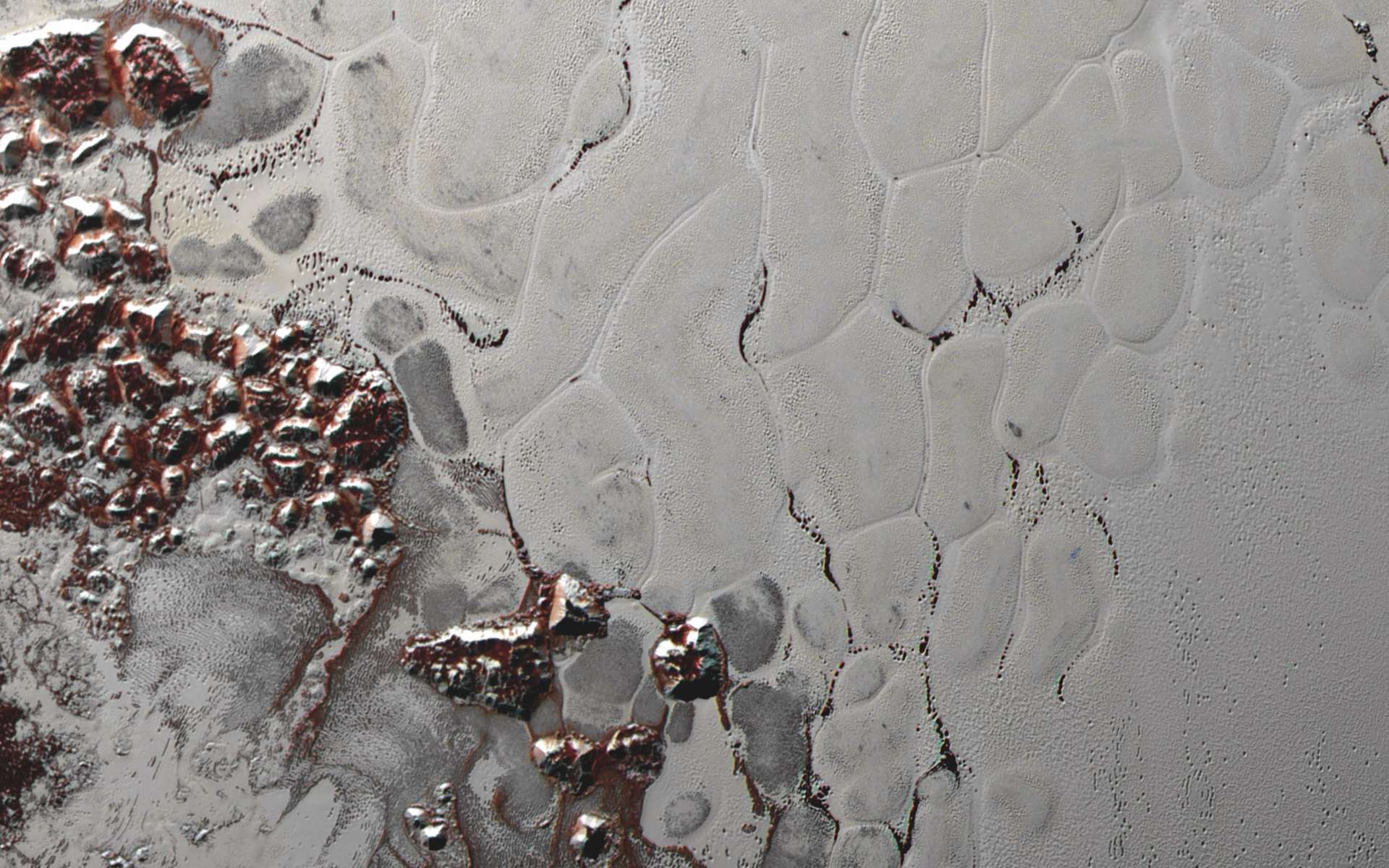 Une portion large de 400 km de la plaine Spoutnik imagée avec Ralph/MVIC (Multispectral Visible Imaging Camera), le 14 juillet 2015. À gauche, les montagnes de glace d'eau bordant la vaste étendue nappée de glace d'azote. On y distingue la forme bombée des cellules de convection. © Nasa, JHUAPL, SwRI