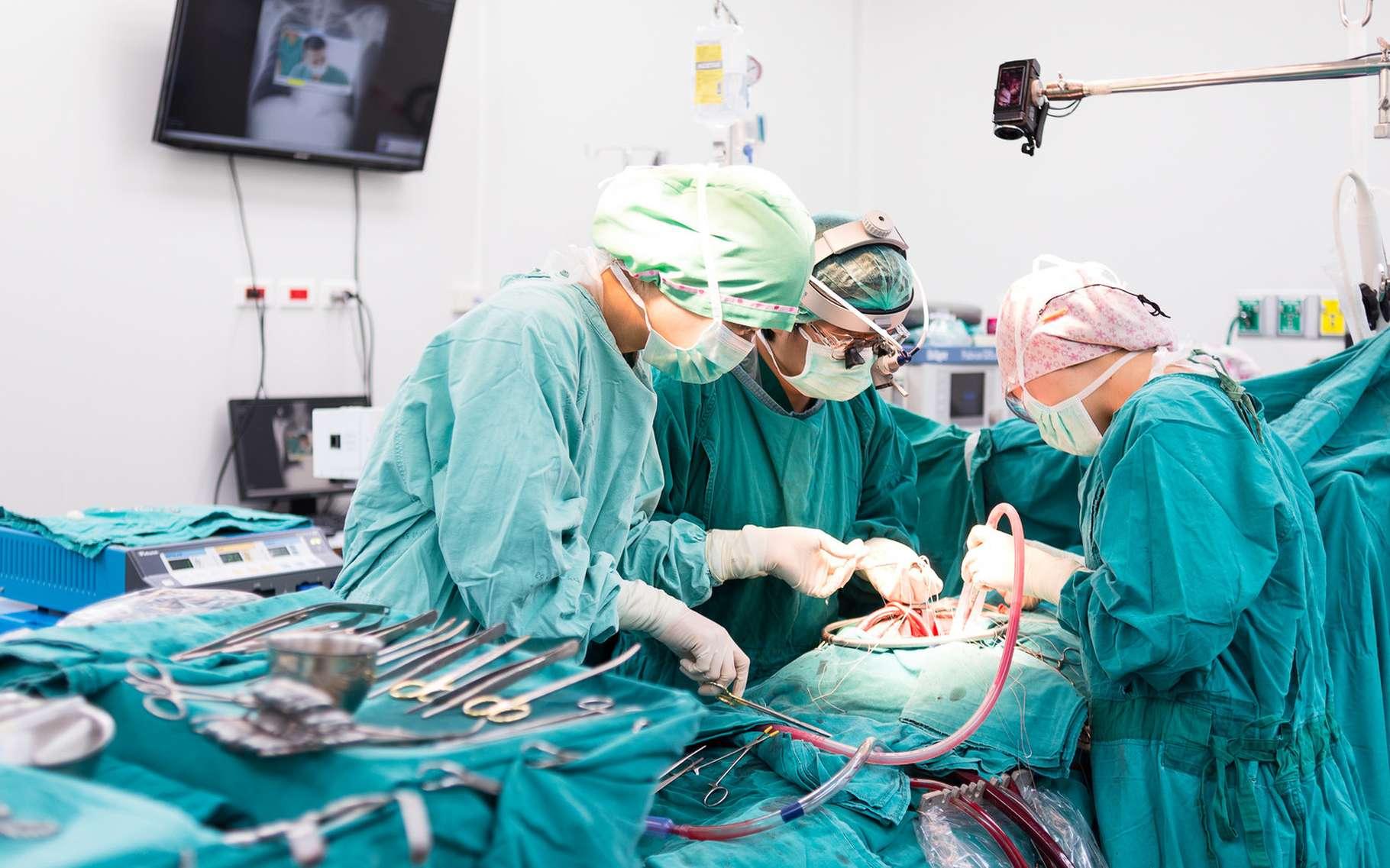 Le pontage aortocoronarien nécessite une opération à cœur ouvert. © ChaNaWiT, Shutterstock