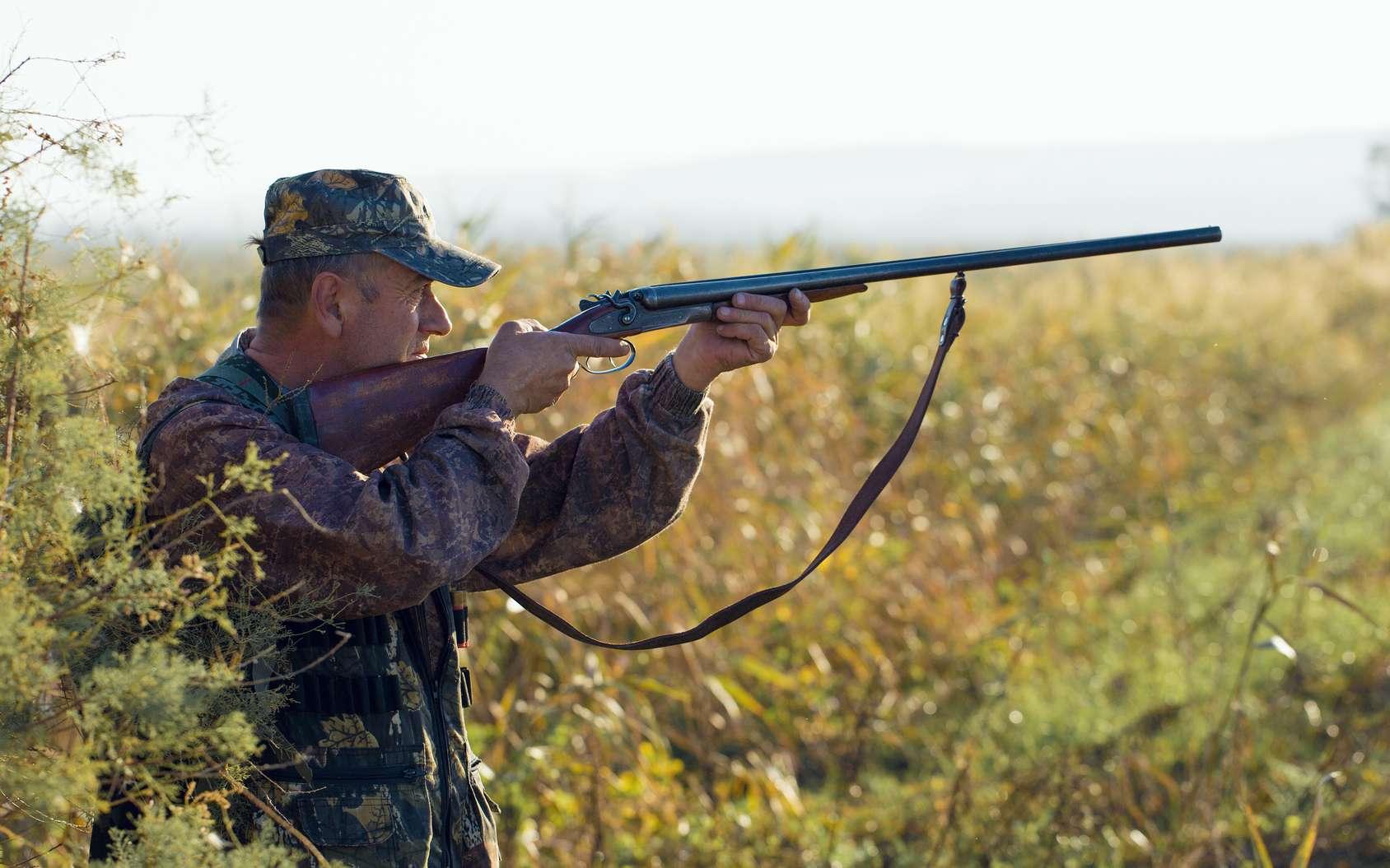 Chaque année, 21.000 tonnes de plomb utilisées par les chasseurs se retrouvent dans la nature. © Anton, Fotolia.com