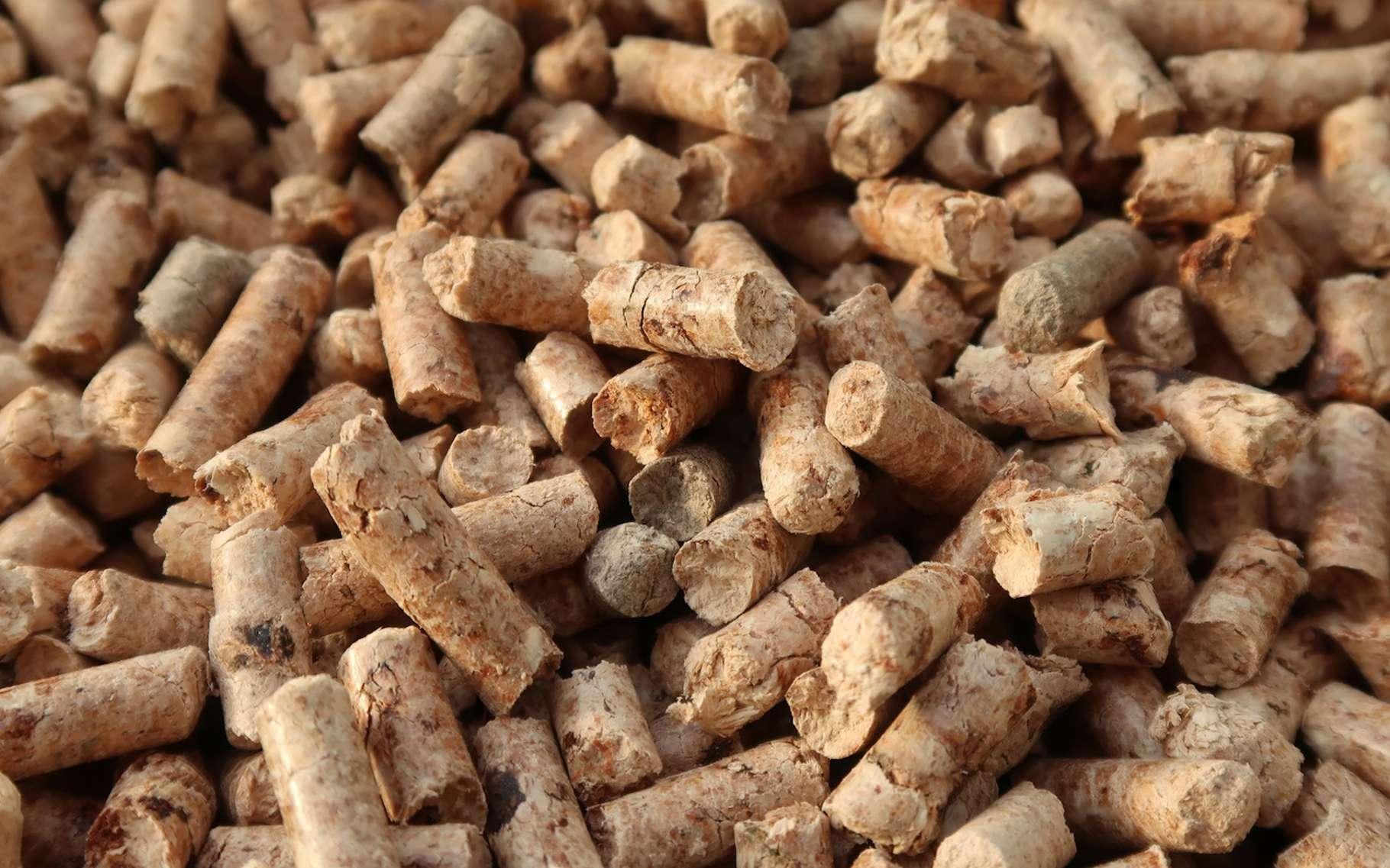 Les granulés de bois sont composés de sous-produits de la transformation du bois. © springtime78, Fotolia