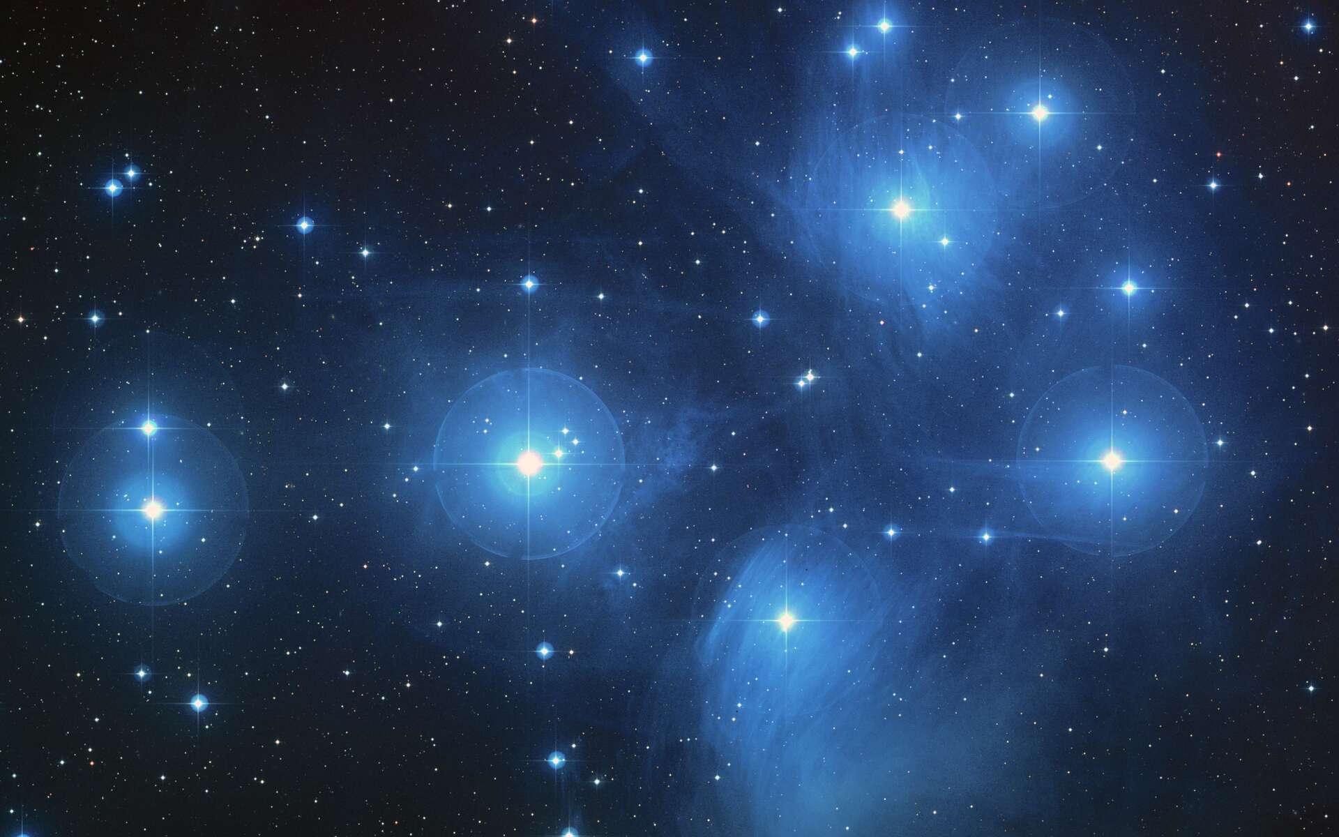 Une image des Pléiades (M45), un célèbre amas ouvert d'étoiles qui sont nées il y a environ 135 millions d'années. Cet âge signifie que toutes les étoiles massives formées dans cet amas auraient explosé en supernovae quand les ammonites étaient très abondantes dans les mers. Selon Henrik Svensmark, le taux de supernovae proches aurait fortement influencé la diversité de ces invertébrés marins. © Nasa, Esa and Aura/Caltech