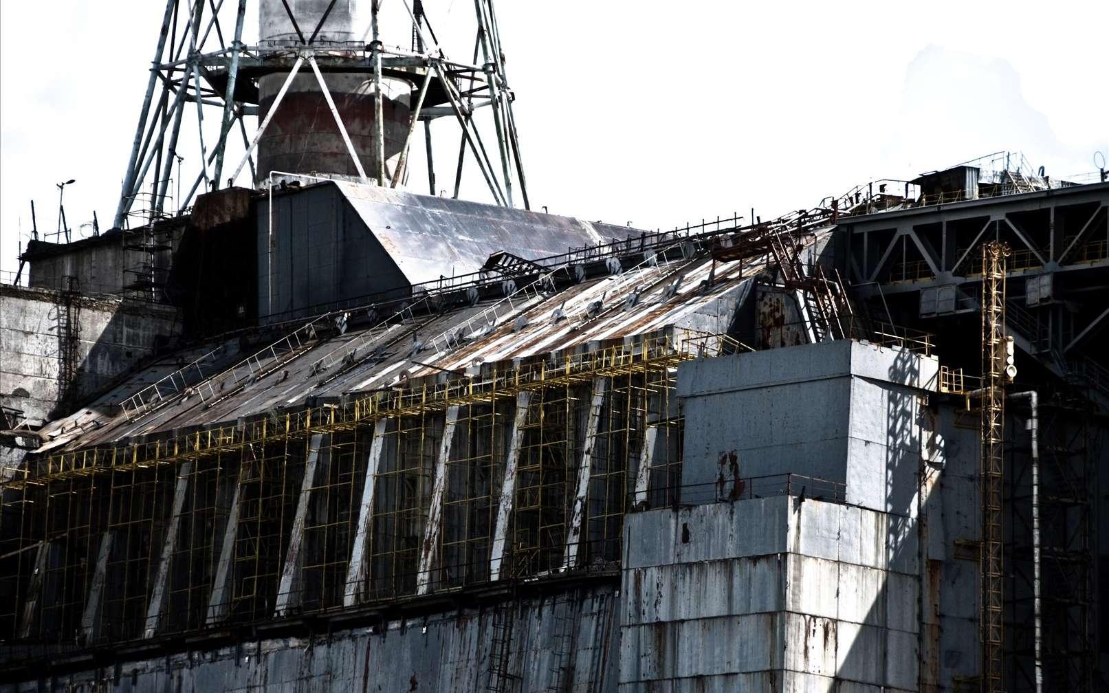 Les liquidateurs et la population avoisinante semblent avoir directement été victimes des émanations radioactives de la centrale nucléaire de Tchernobyl. Des décès et des incidences de cancers élevées en attestent. Plus de 25 ans après, les conséquences sanitaires et écologiques se font toujours ressentir. © Marco Fieber, Fotopédia, cc by nc nd 2.0