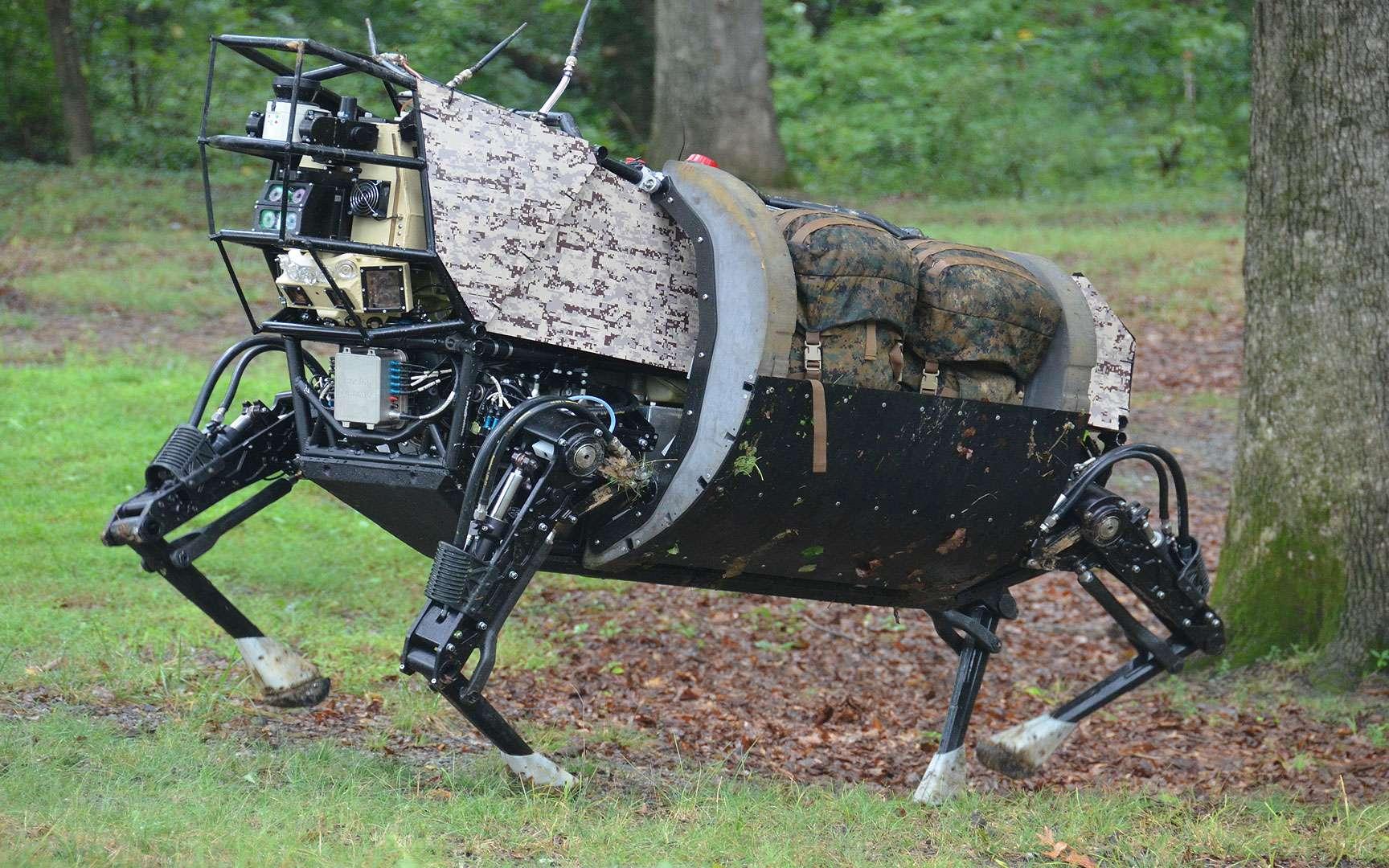 Kellar Autumn ou le robot-gecko. Le lézard gecko a une capacité d'adhésion spectaculaire : il peut se suspendre à toute surface lisse, rugueuse, humide ou sèche en supportant tout son poids avec un seul doigt, grâce aux « forces de van der Waals ». Il peut aussi adhérer et se décoller aussi facilement, chaque opération durant environ 1/8000e de seconde. Le robot Stickybot, mis au point à l'université de Stanford, a tous ses doigts tapissés d'une nanostructure poilue qui lui permet de grimper le long d'une vitre ou d'un mur lisse grâce à ces mêmes forces. © Kellar Autumn, Lewis & Clark College, Portland