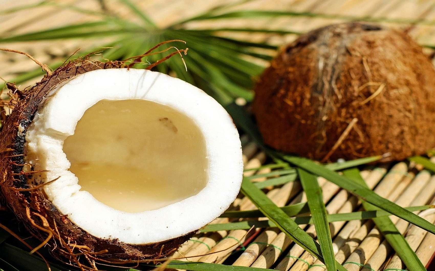 Les manières d'utiliser l'huile de coco. © couleur, Pixabay