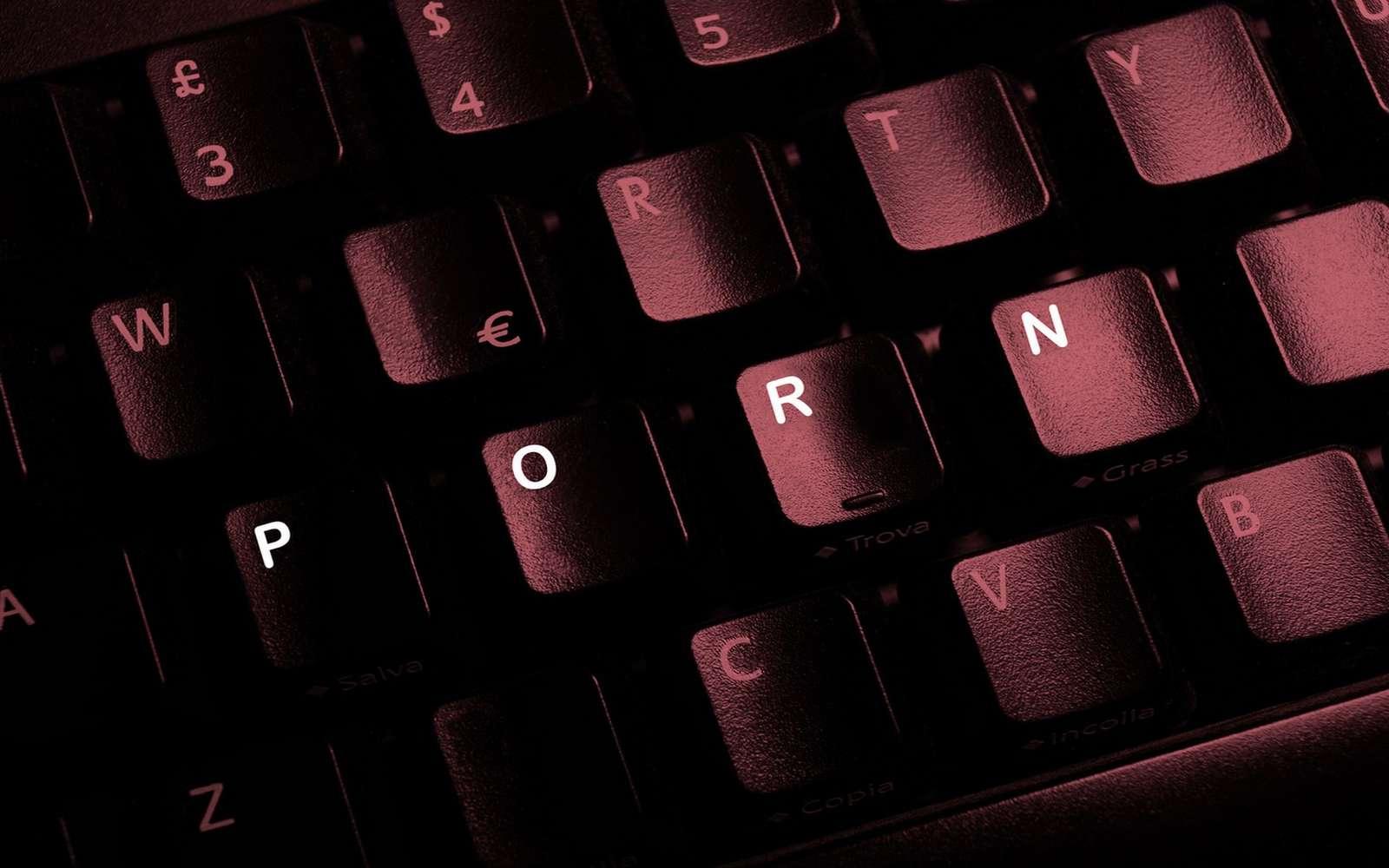 Certaines pages Web pornographiques sont piégées avec des logiciels malveillants qui s'installent à l'insu de l'utilisateur. © Ginettigino, Fotolia