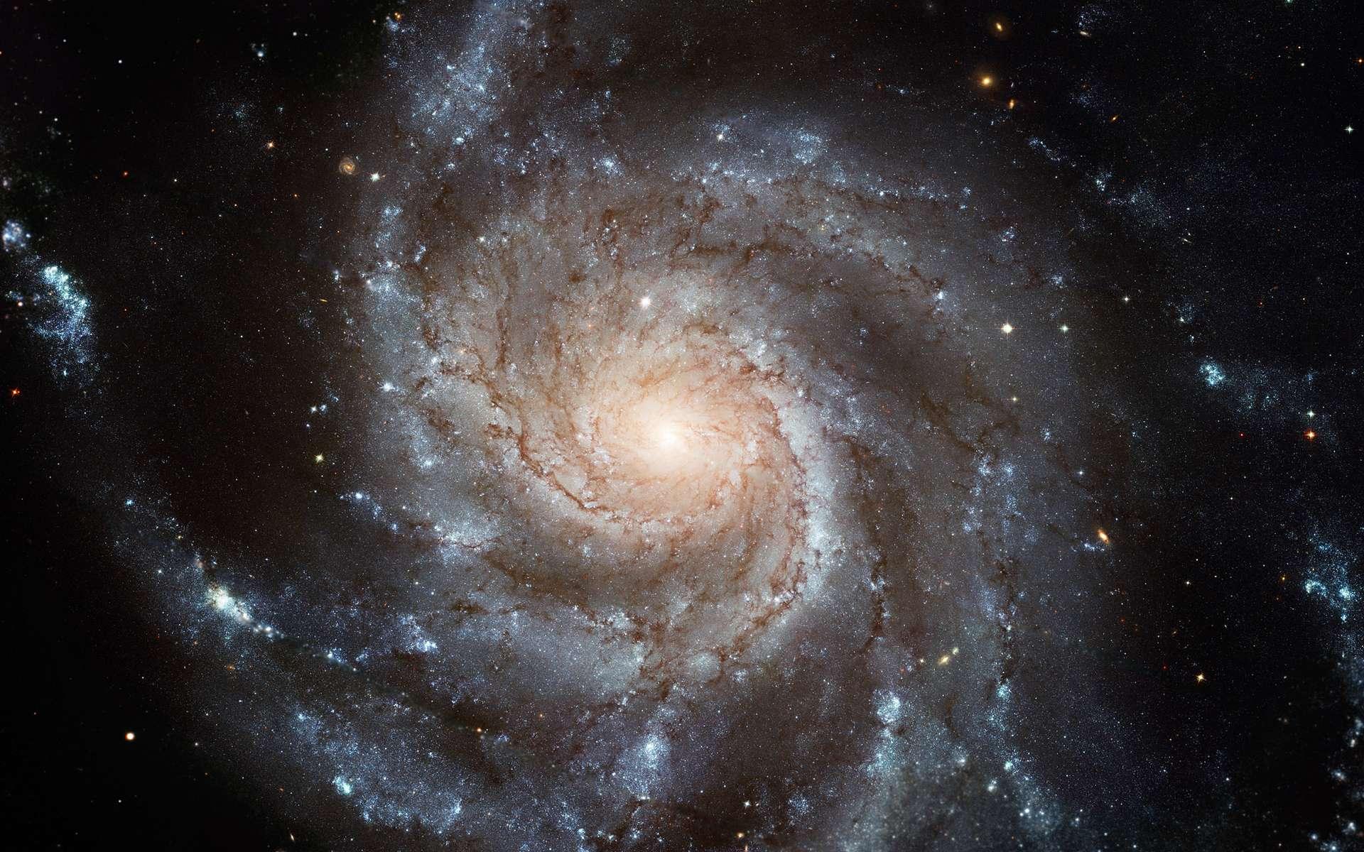 Située dans la constellation de la Grande Ourse, à environ 21 millions d'années-lumière de notre Voie lactée, M101 est une galaxie spirale très étudiée. On la voit ici observée avec Hubble. © Nasa, Esa