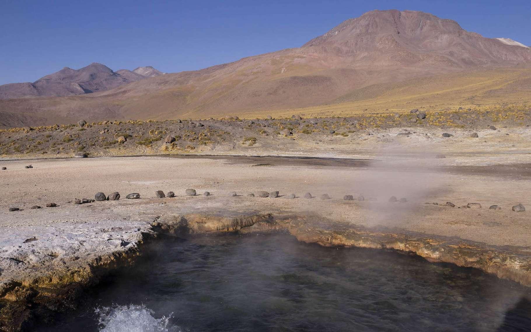 Des chercheurs de l'université de Rutgers ont notamment collecté des bactéries dans cette source d'eau chaude de la région d'El Tatio, au Chili. Ils leur ont trouvé des similitudes génétiques surprenantes avec d'autres bactéries prélevées à des milliers de kilomètres de là. © Yaroslav Ispolatov, université de Santiago du Chili